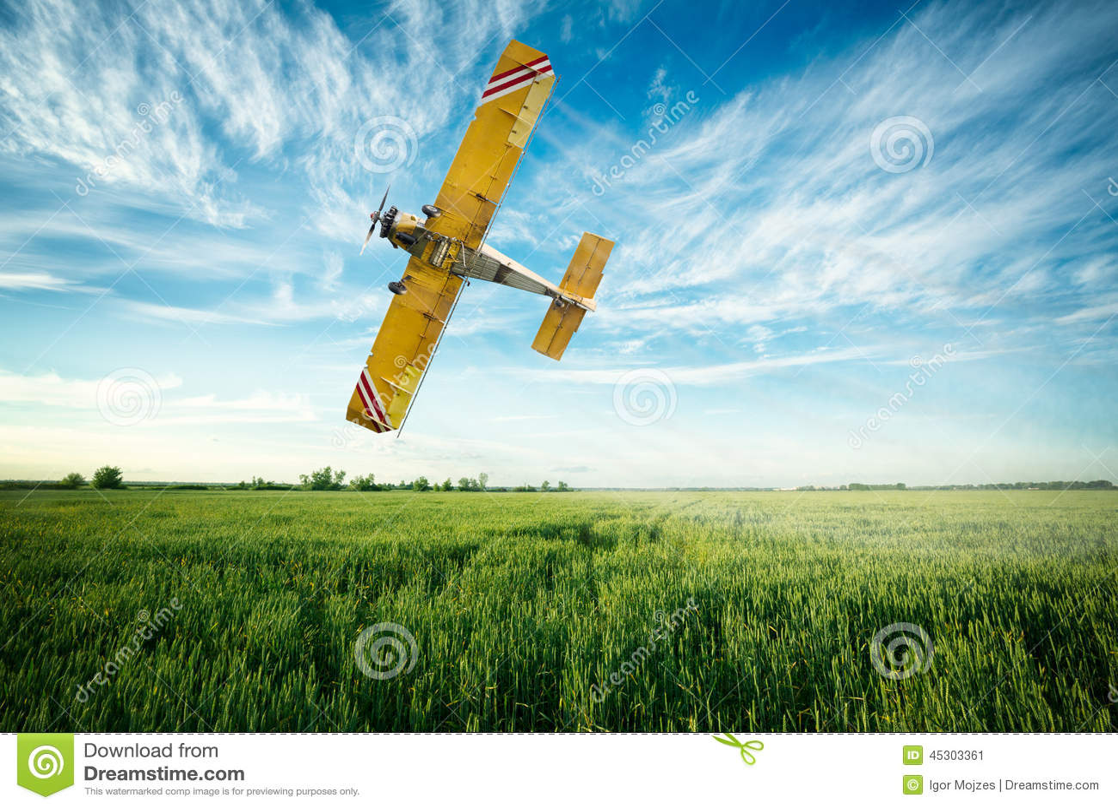 L avion vole au-dessus d un fongicide et d un pestici de pulvérisation de champ de blé