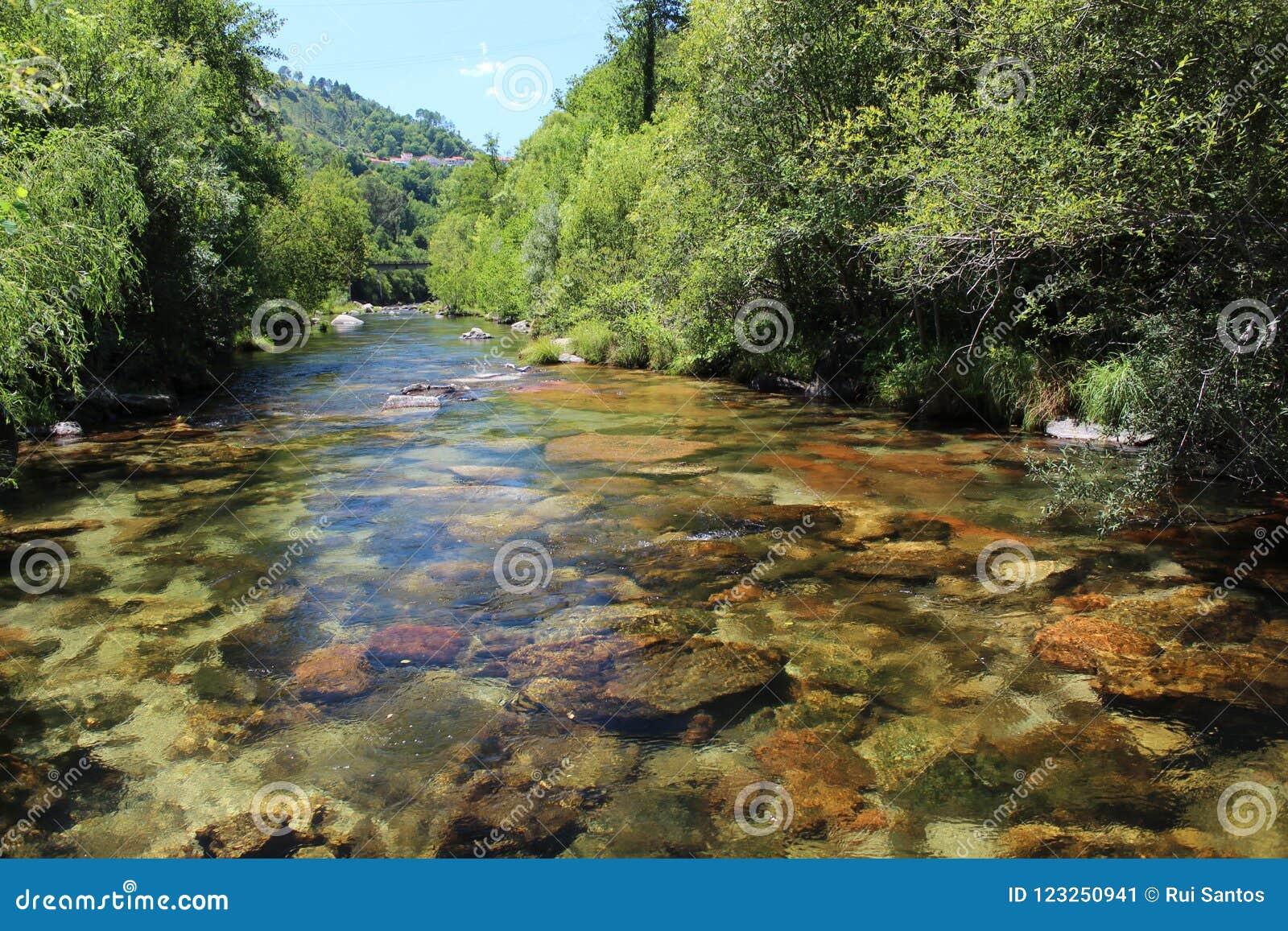 L eau claire à la rivière de Cavado - 2