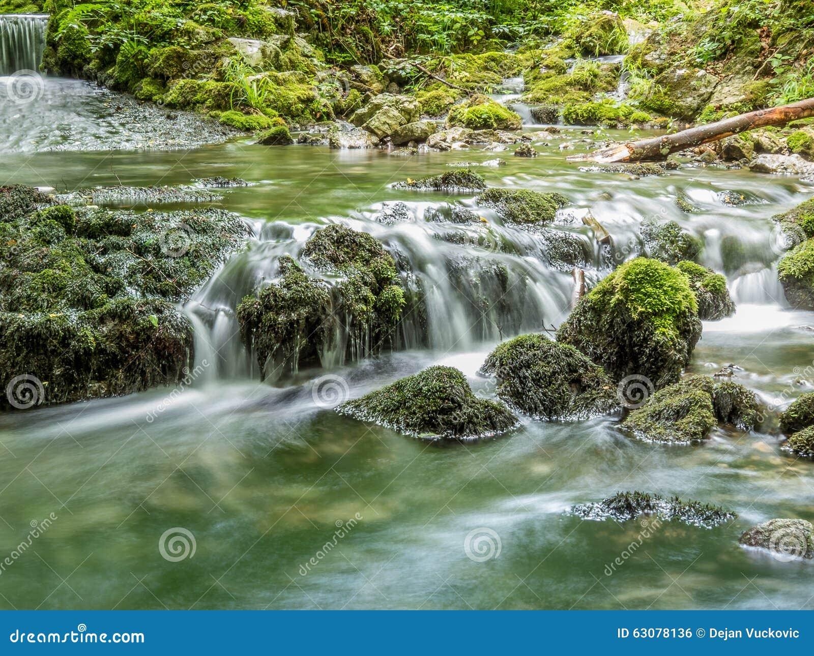 Download L'eau et mousse photo stock. Image du roches, frais, fond - 63078136