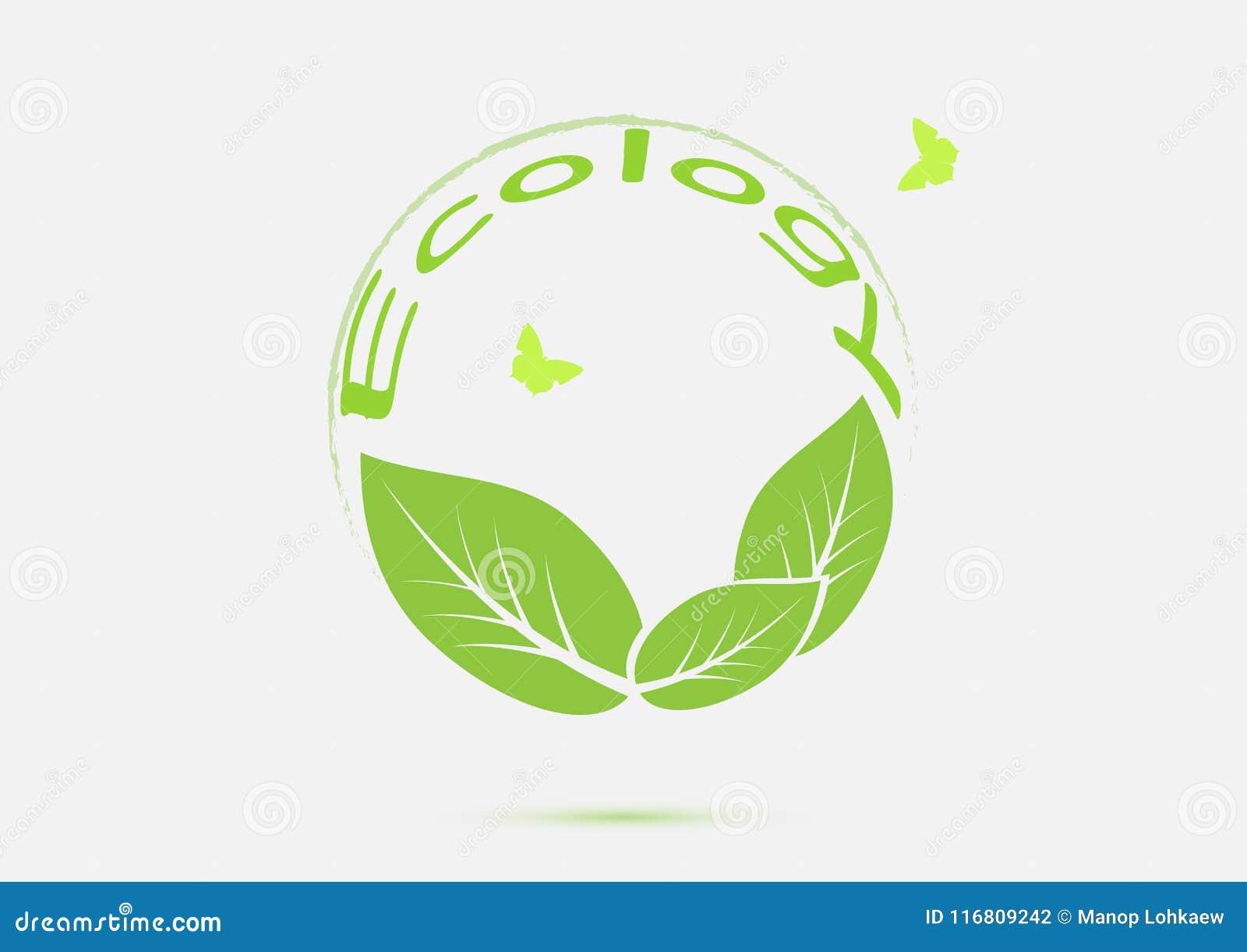 L ecologia pensa il concetto verde dell icona