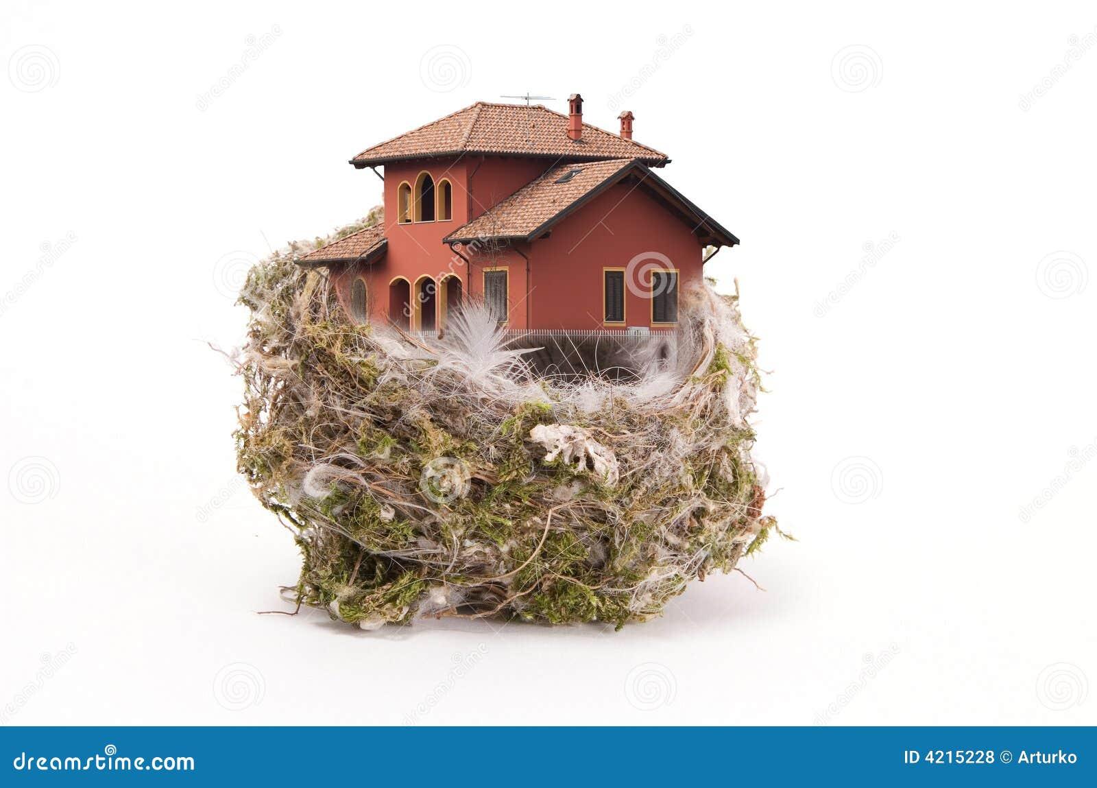 L emboîtement de l oiseau avec la maison