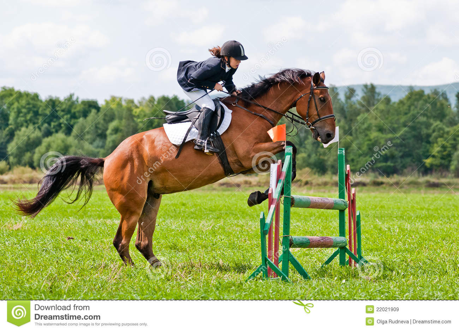 L 39 enfant curseur avec le cheval saute par dessus un obstacle image stock ditorial image du - Frison saut d obstacle ...