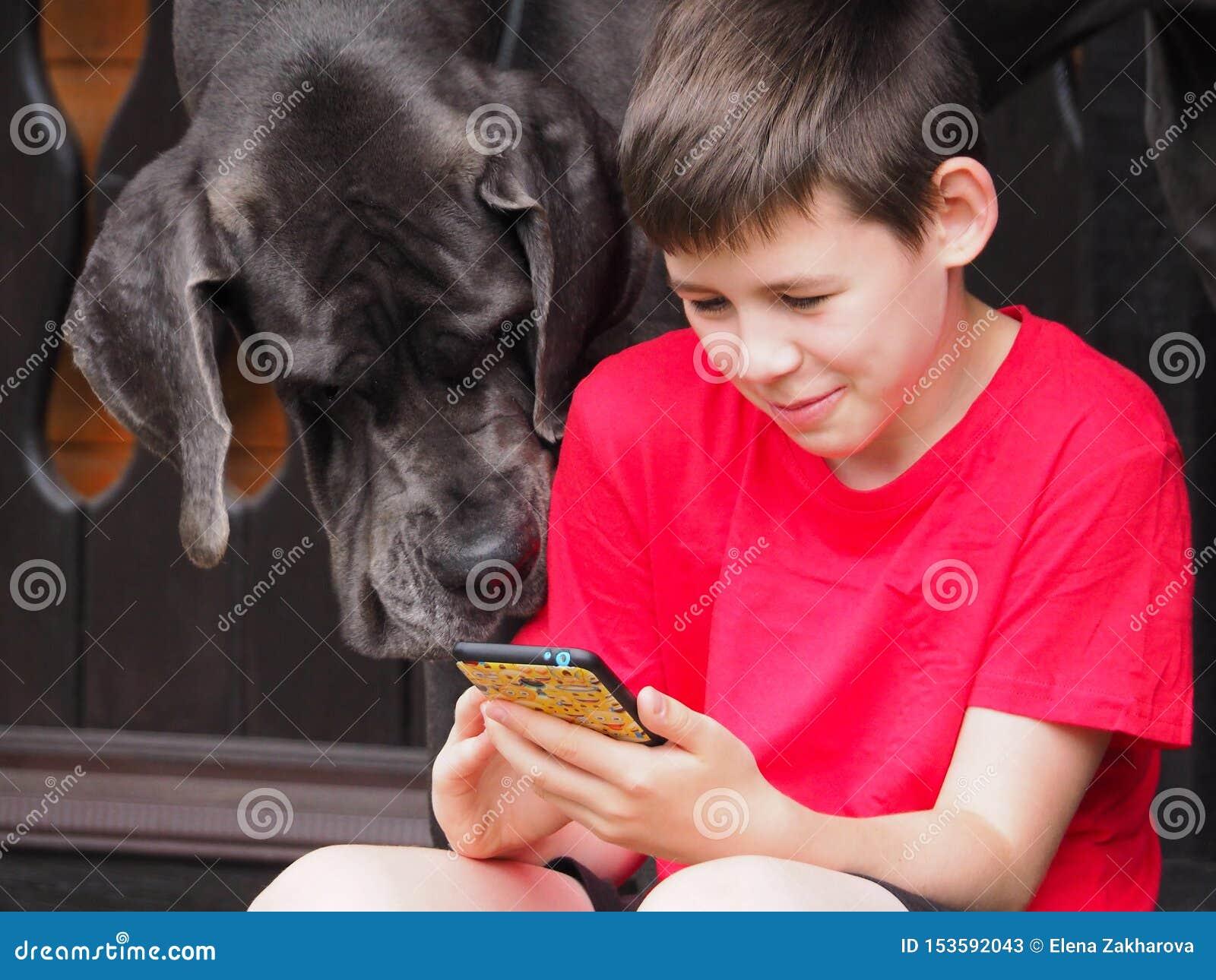 L enfant et son regard d ami de chien ensemble au téléphone