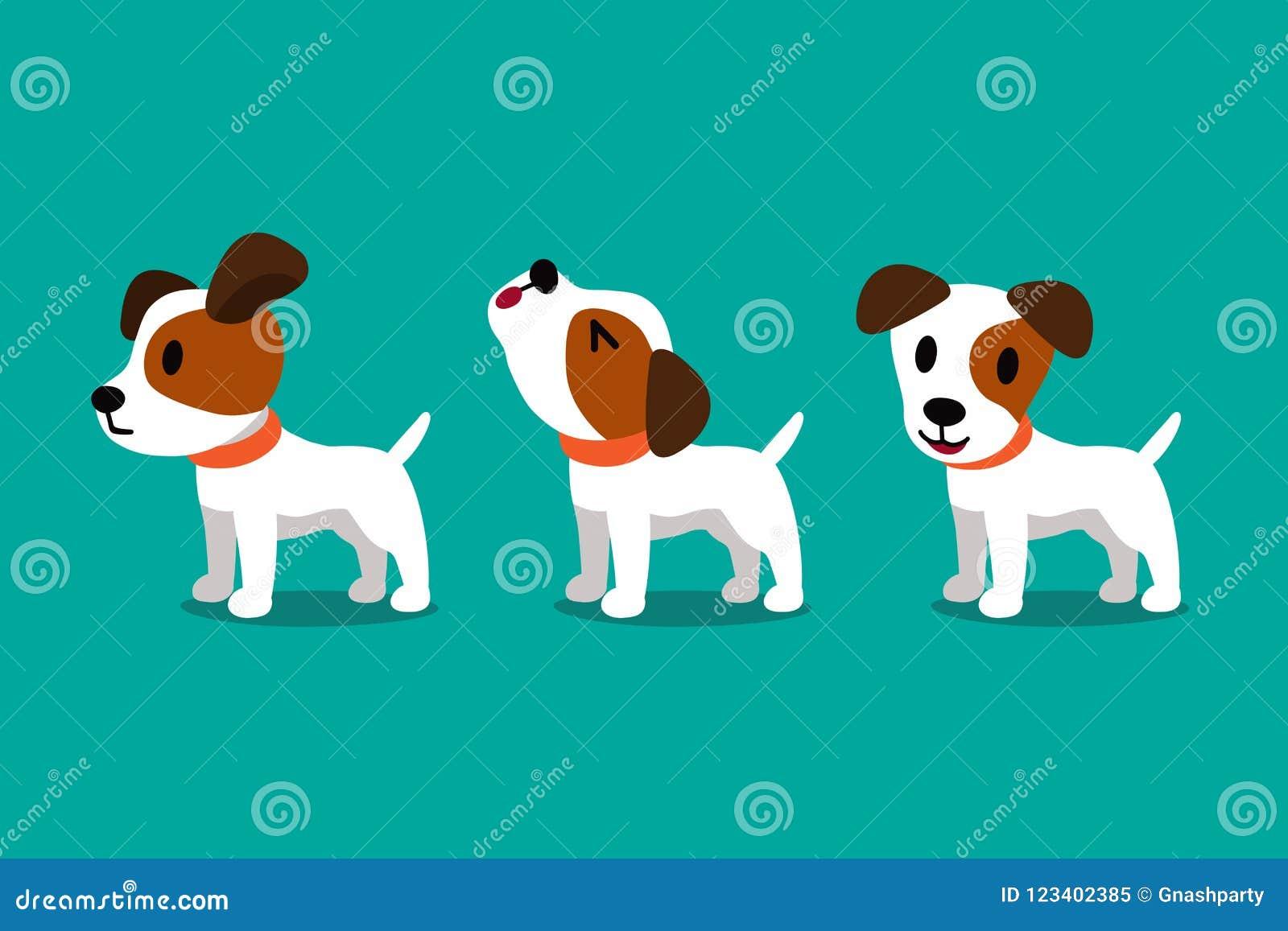 L Ensemble De Chien Mignon De Terrier De Russell De Cric De