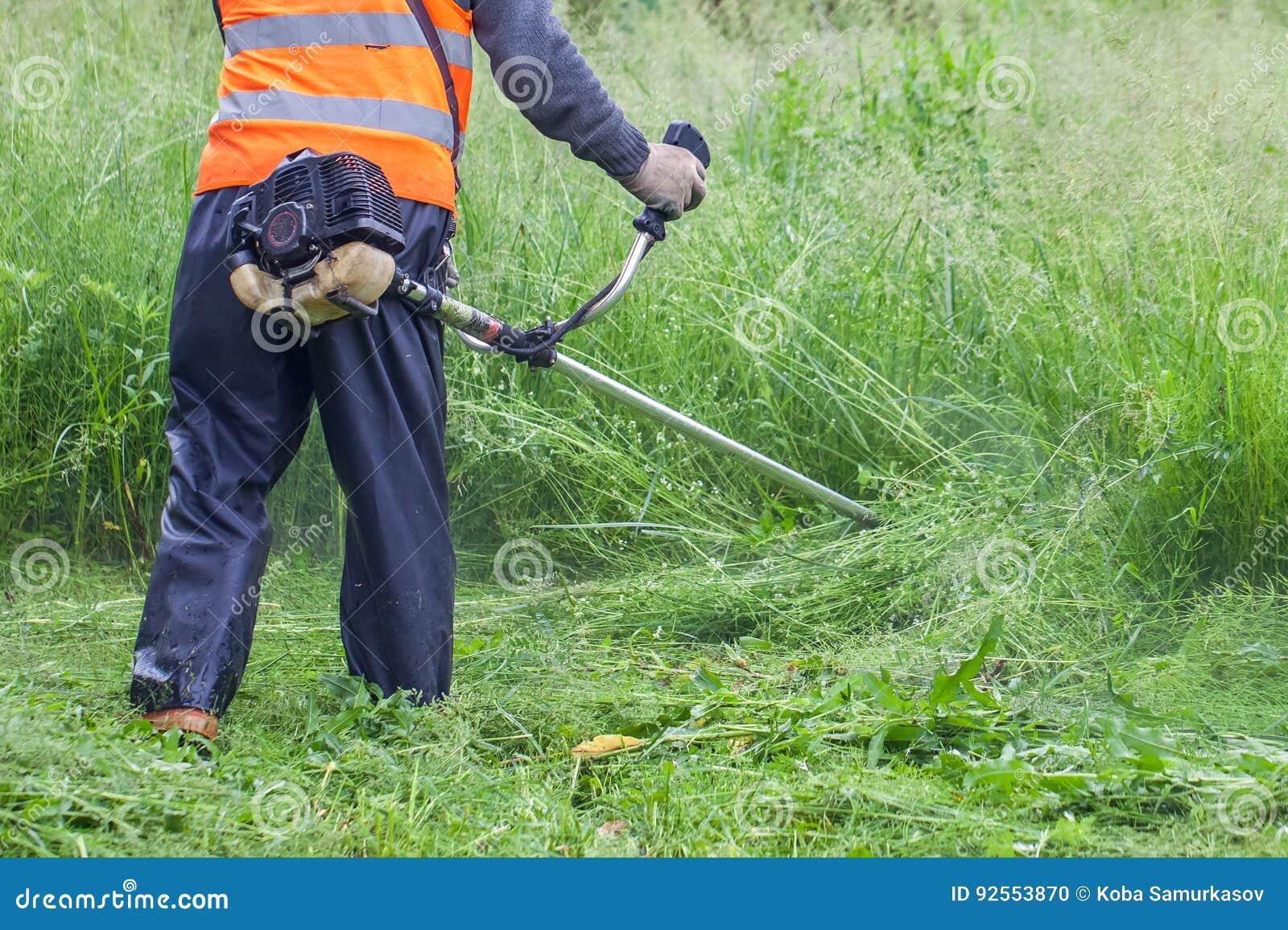 L erba di taglio del giardiniere dalla falciatrice da giardino