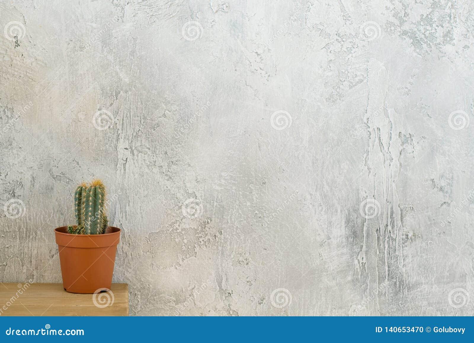 L espace de copie de raboteuse de cactus de style de grenier de Flora