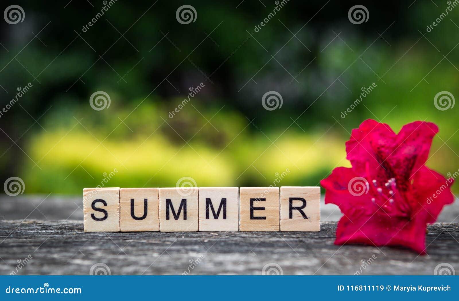 L estate di parola, composta delle plance di legno leggere e rhodode rosso