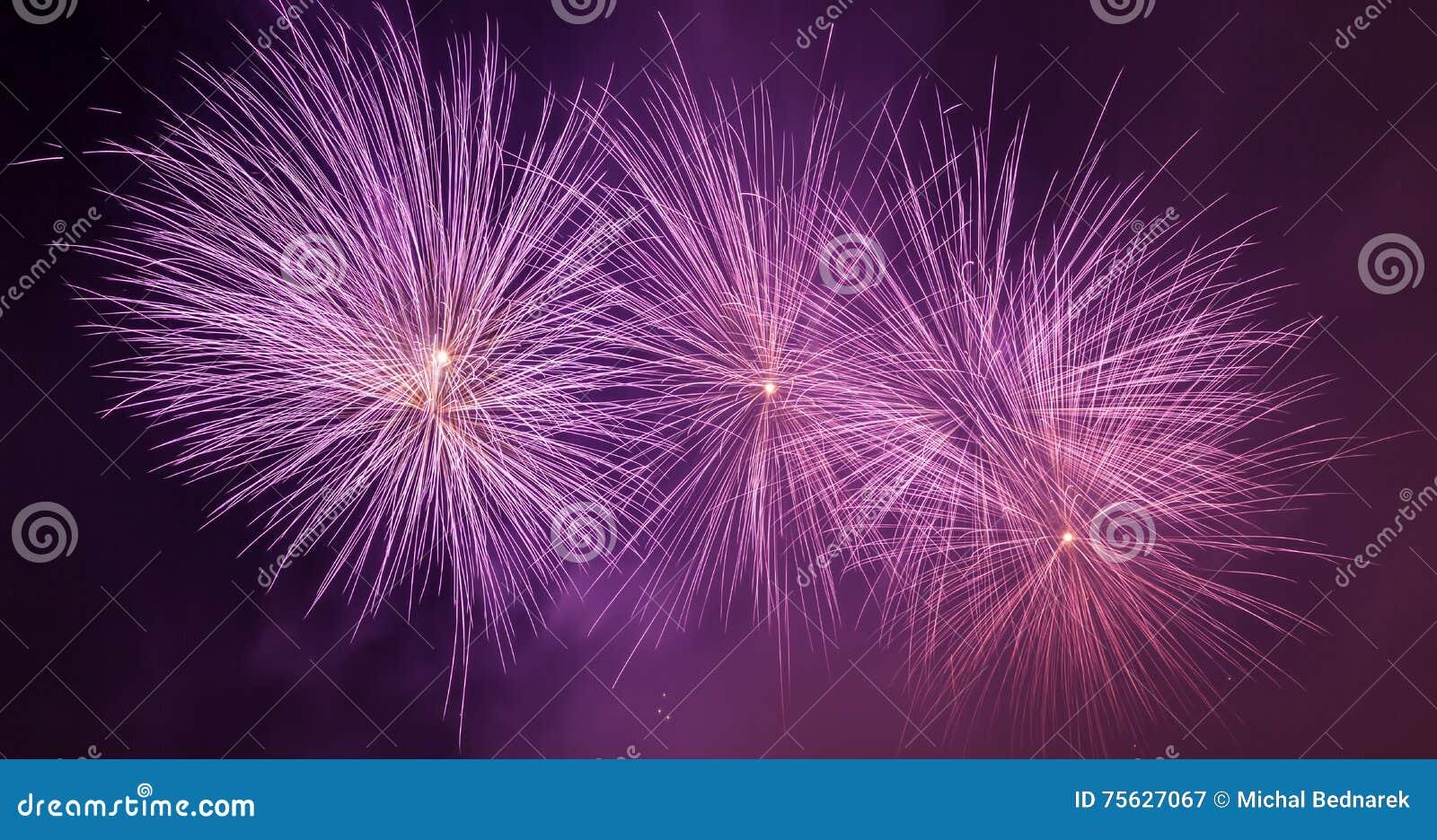 L exposition spectaculaire de feux d artifice allument le ciel Célébration d an neuf Panorama