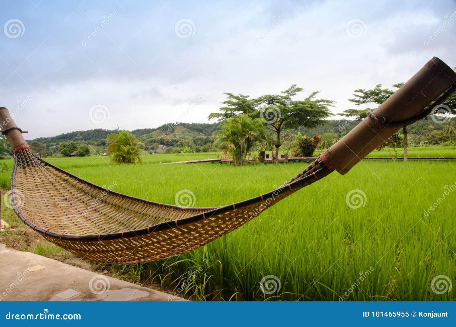 l'hamac en bambou accroche sur le balcon fait de matériel indigène