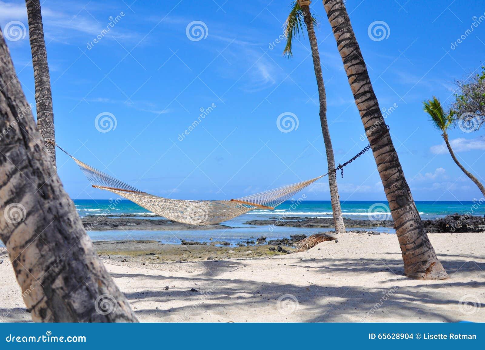 L hamac net a attaché aux palmiers la grande île