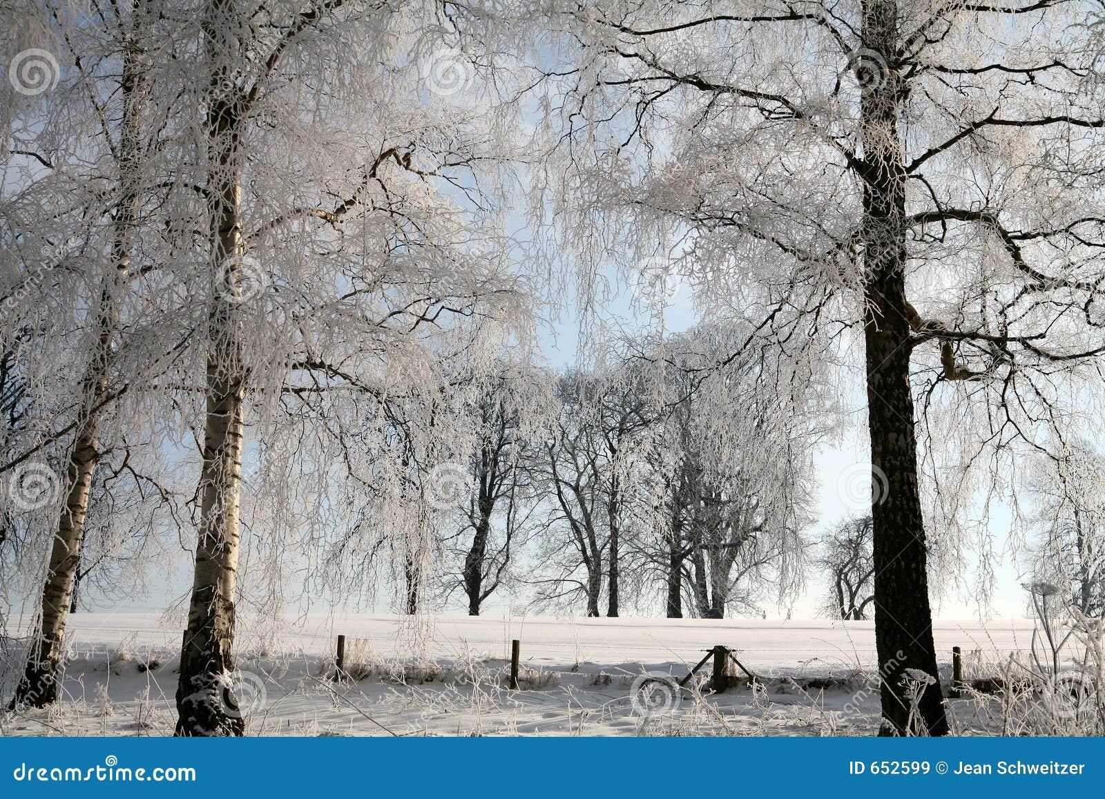 L hiver au Danemark