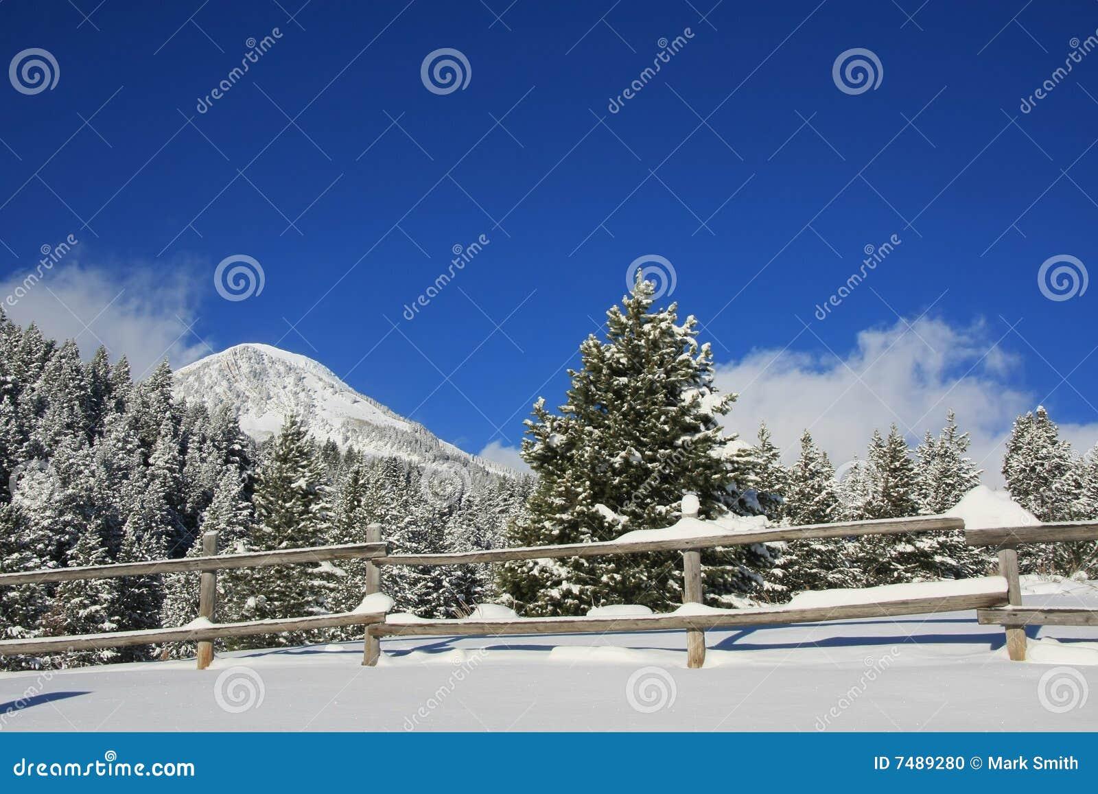 L hiver de skys