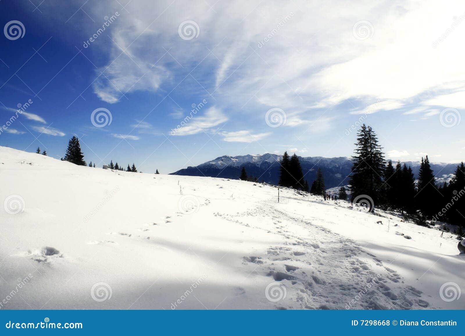 L hiver ensoleillé de jour