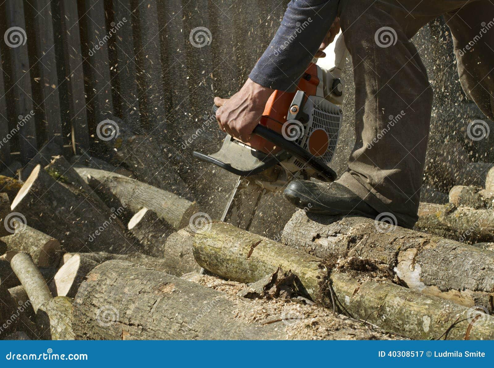 L homme coupe un arbre tombé