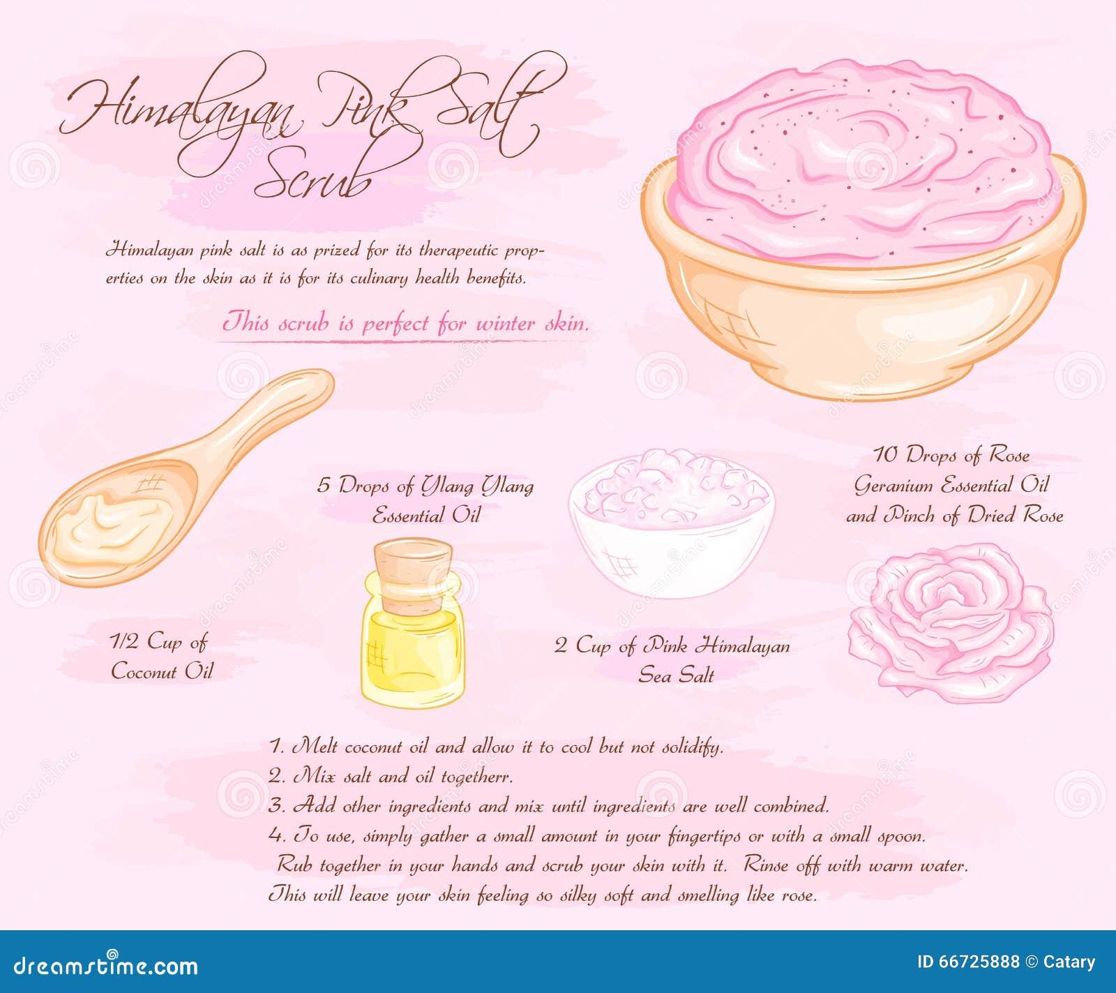 L illustration tirée par la main de vecteur du sel hymalayan de rose de rose frottent la recette