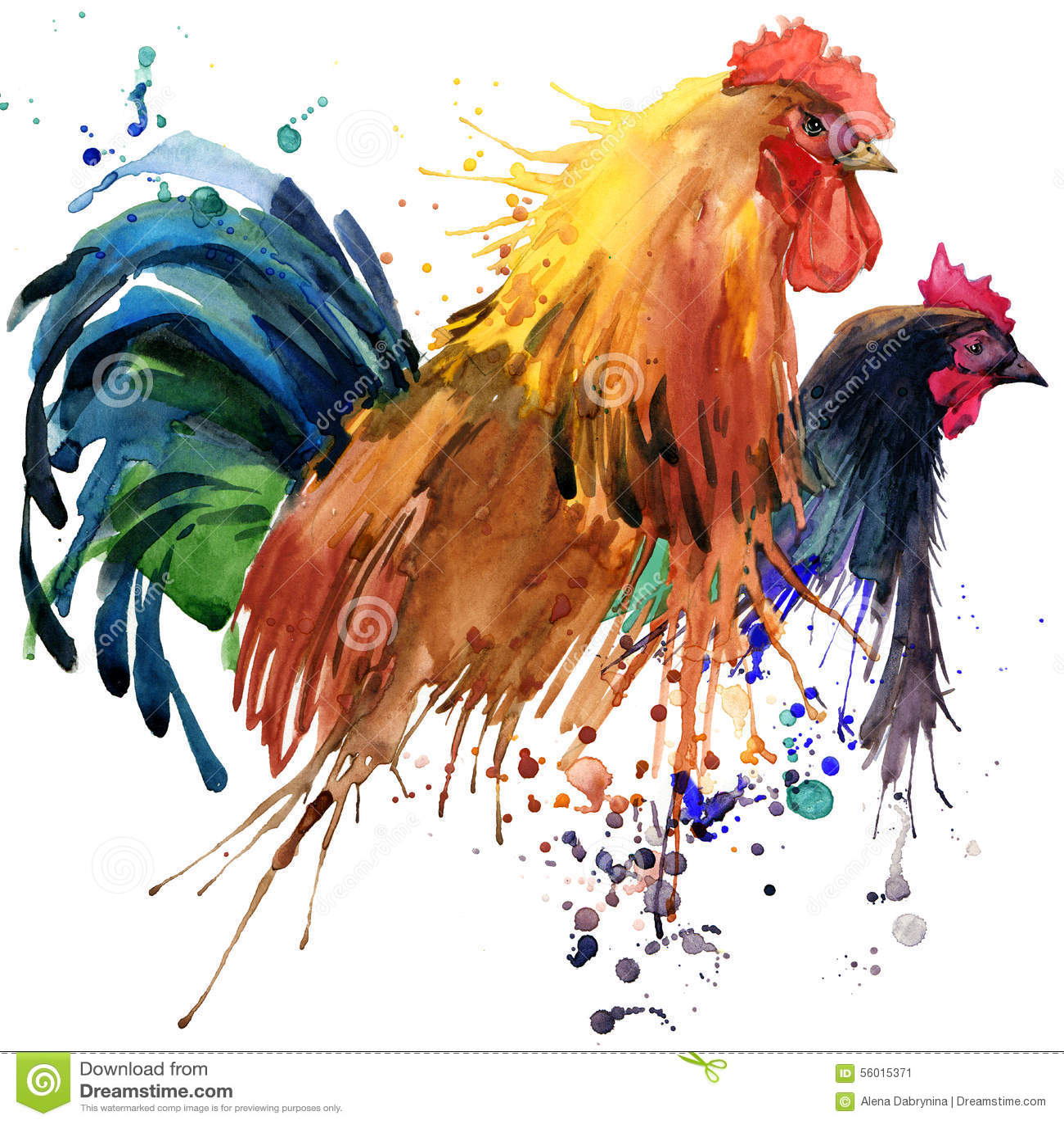 L illustrazione della famiglia dei grafici, del pollo e del gallo della maglietta del gallo e del pollo con l acquerello della sp