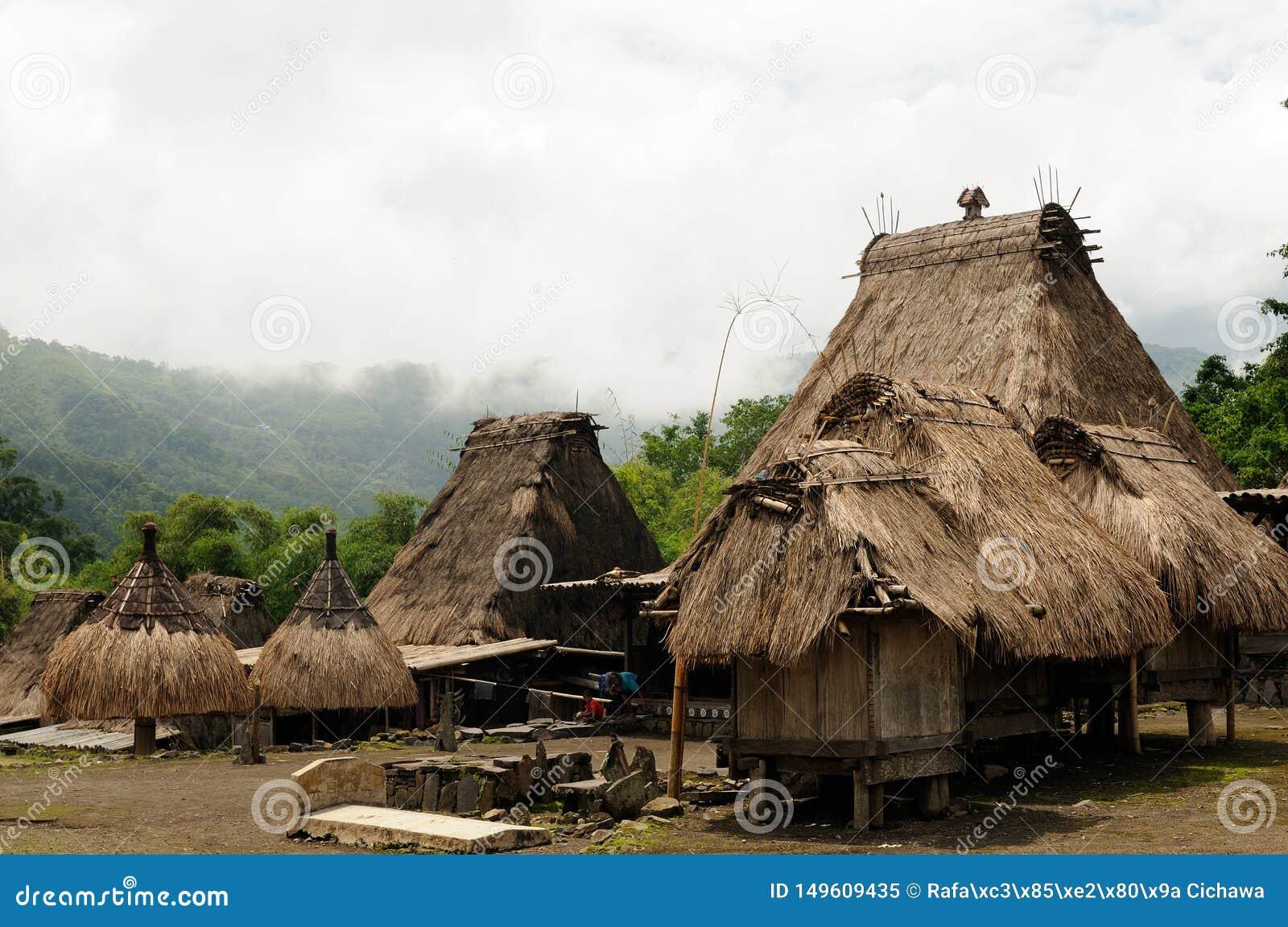 L Indonesia, Flores, villaggio di Bena