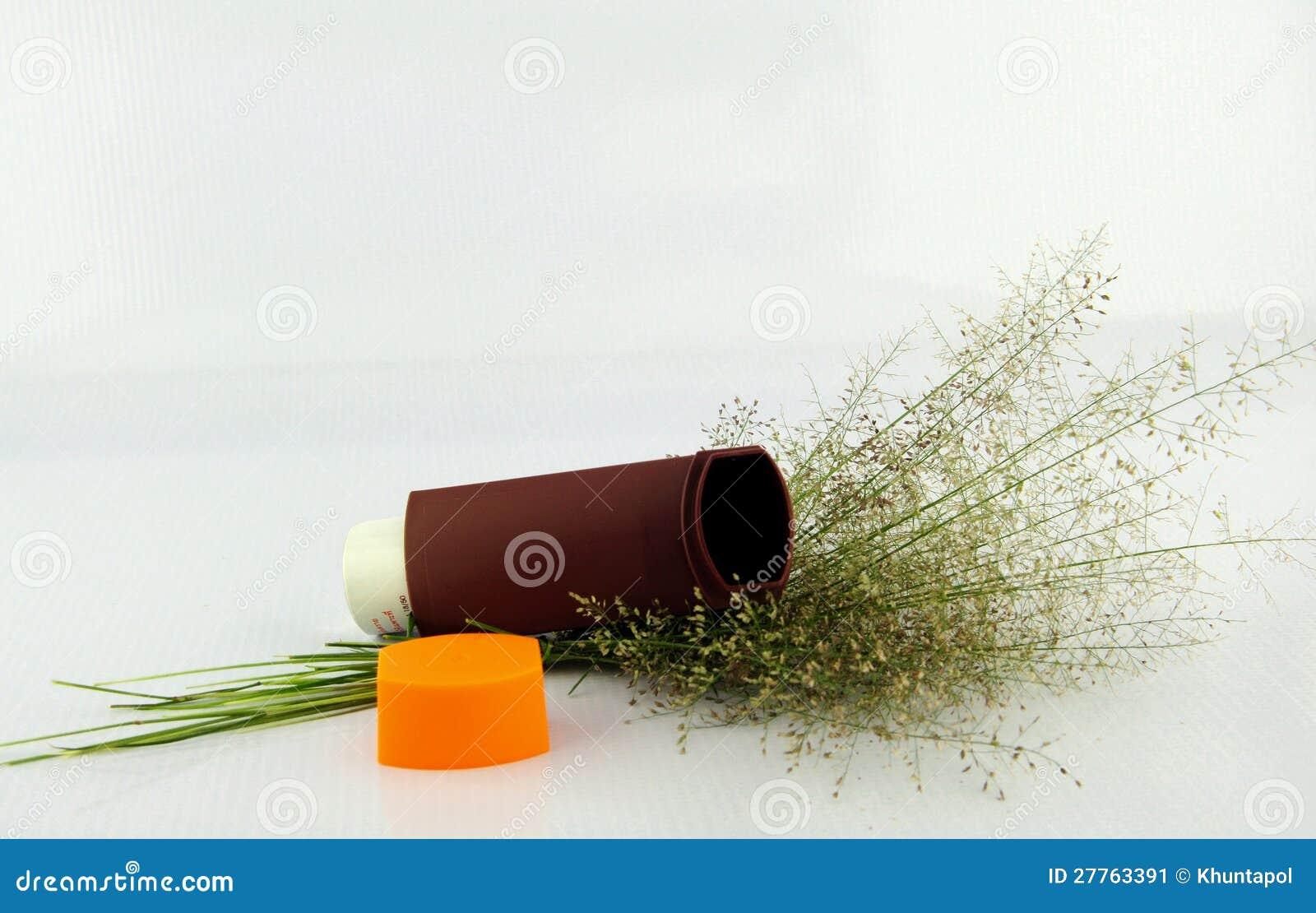 L inhalateur et l herbe d asthme de Brown fleurissent sur le fond blanc