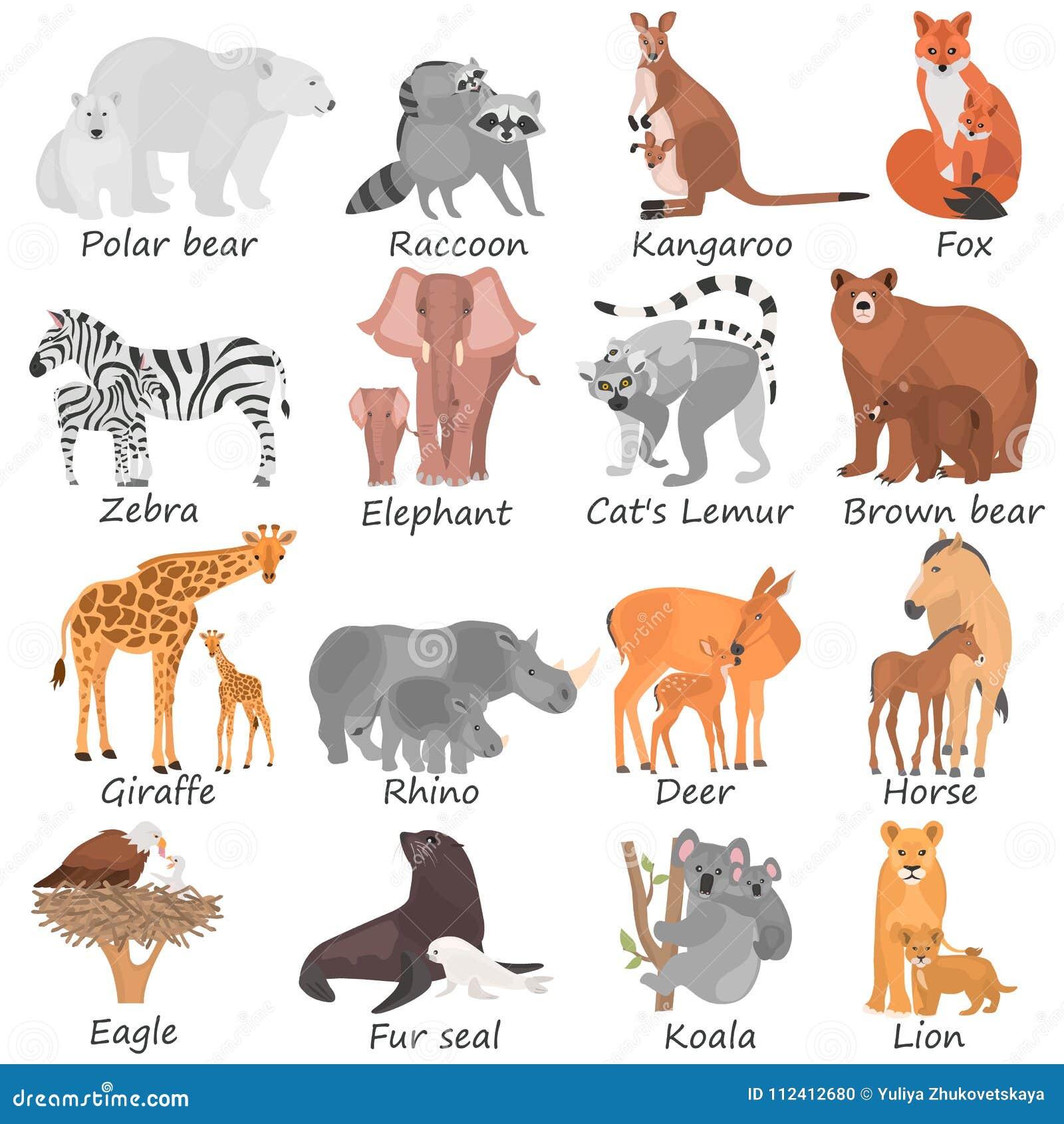 L insieme degli animali adulti differenti ed i loro cuccioli colorano le icone piane