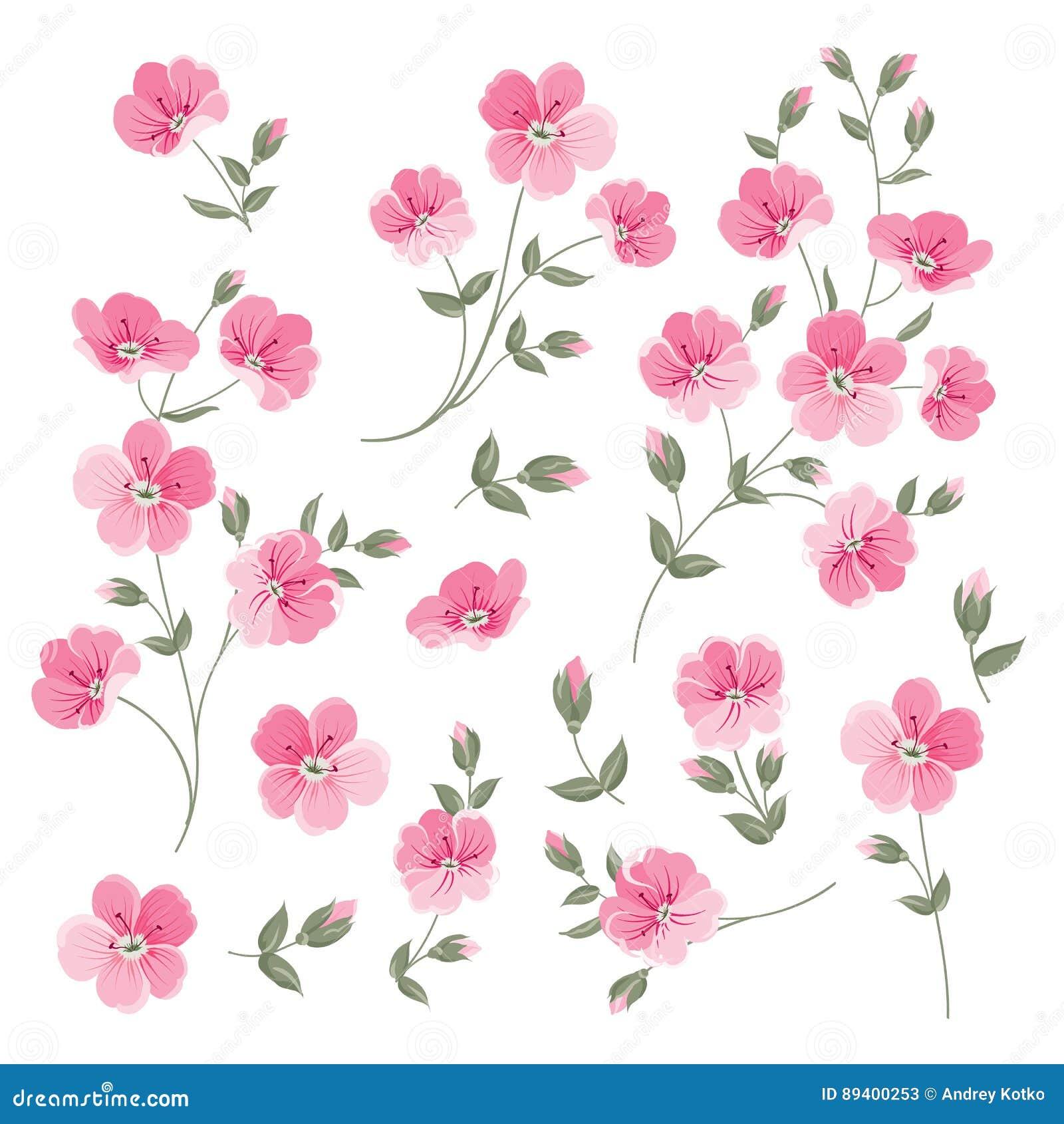L insieme di tela fiorisce gli elementi