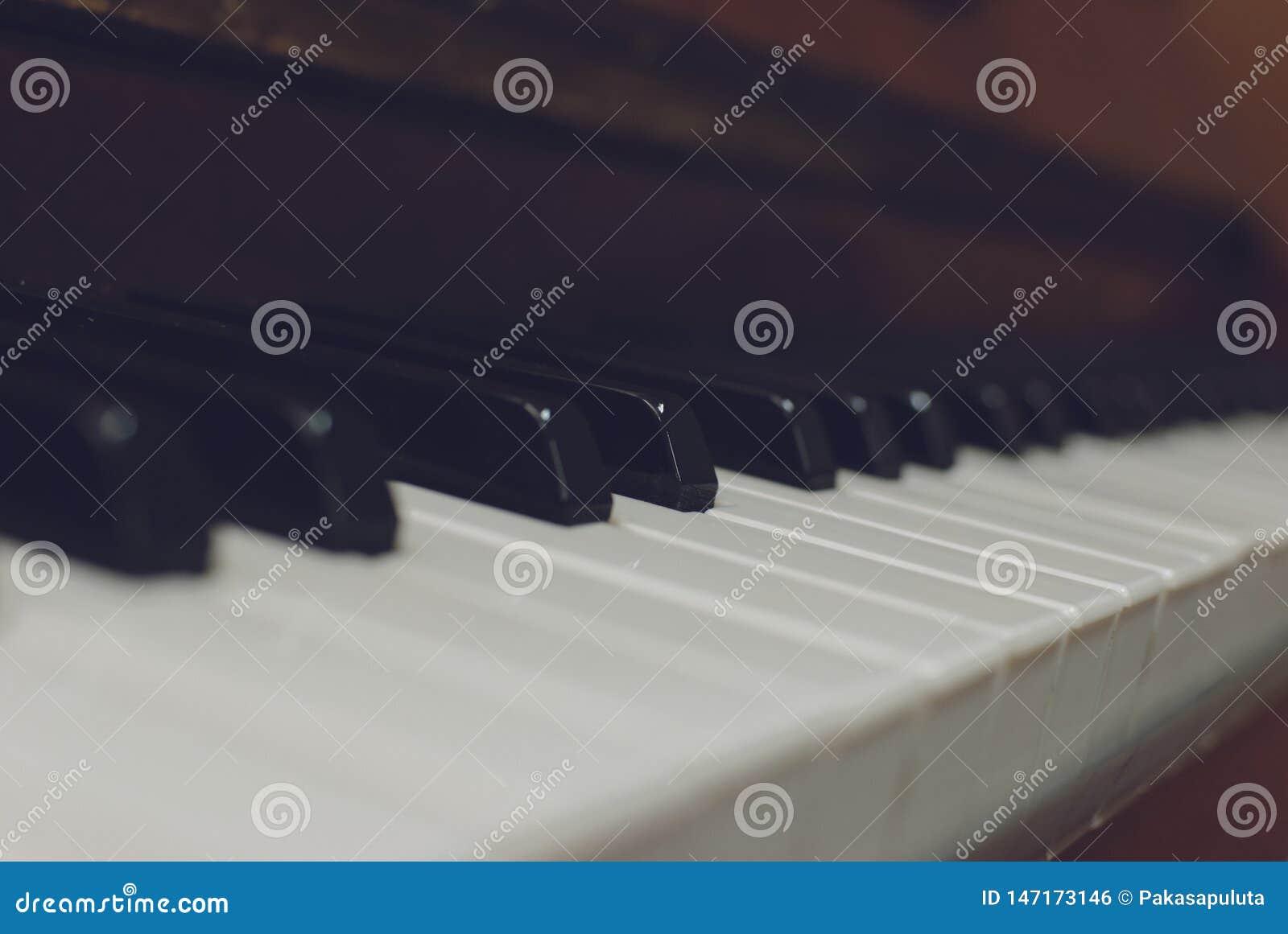 L ivoire blanc et les cl?s noires d un piano