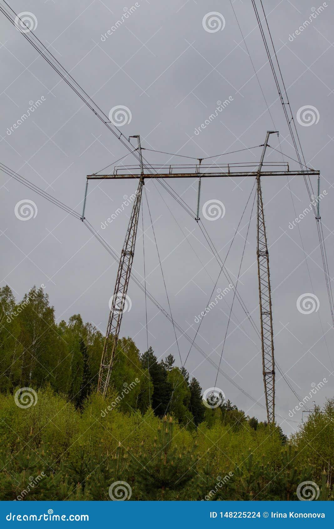 L?nea el?ctrica de alto voltaje Despejando en el bosque siberiano mezclado, Rusia