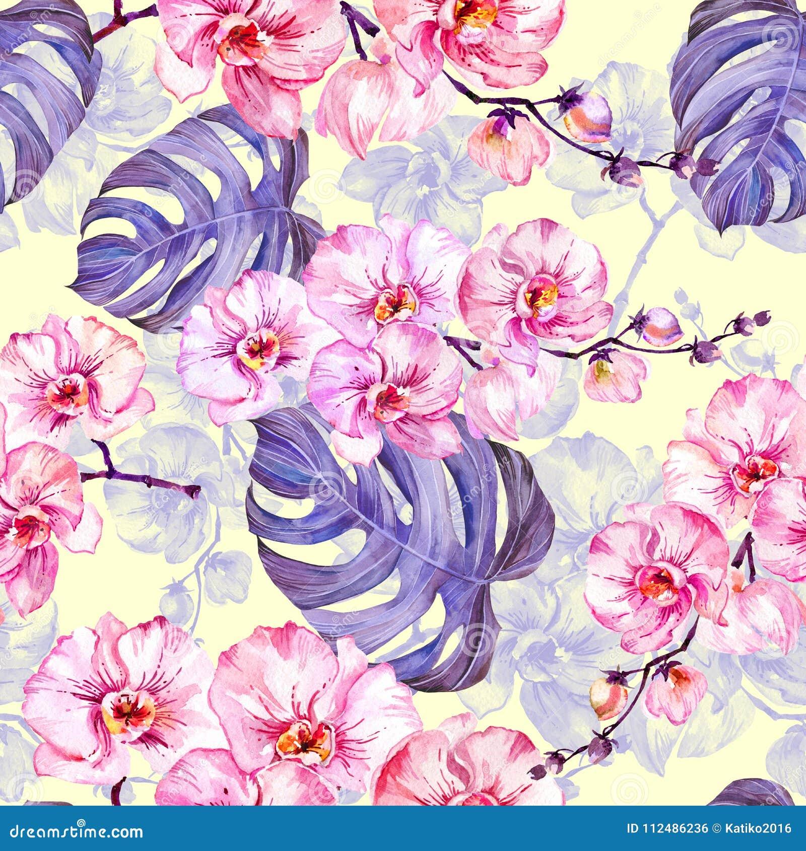 L orchidée rose fleurit avec des contours et le grand monstera pourpre part sur le fond jaune-clair Configuration sans joint