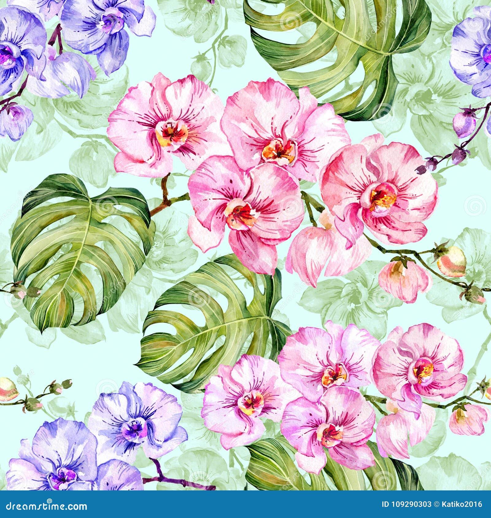 L orchidea blu e rosa fiorisce con i profili ed il grande monstera verde va su fondo blu-chiaro Reticolo senza giunte