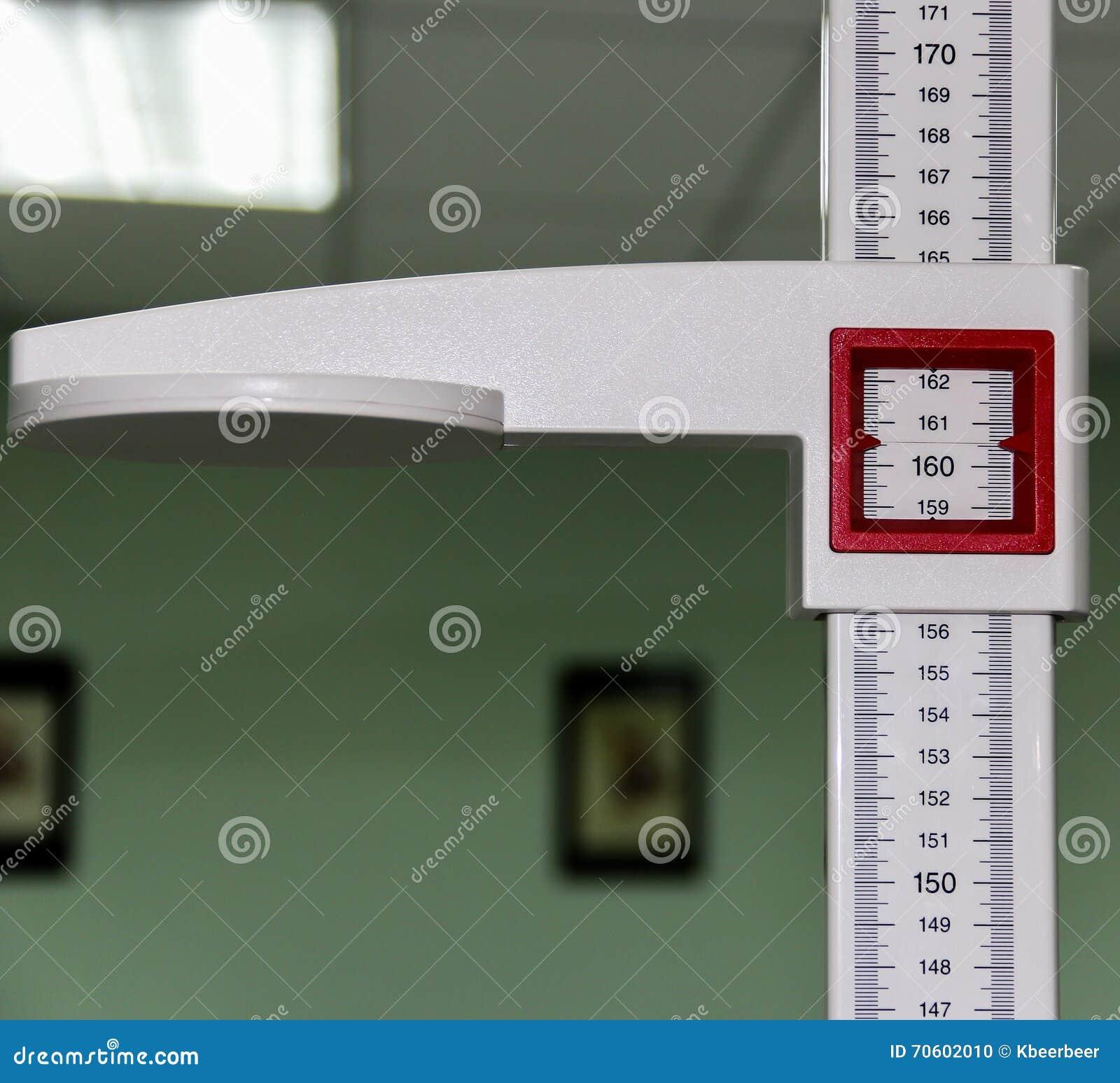 L outil utilisé pour mesurer la taille