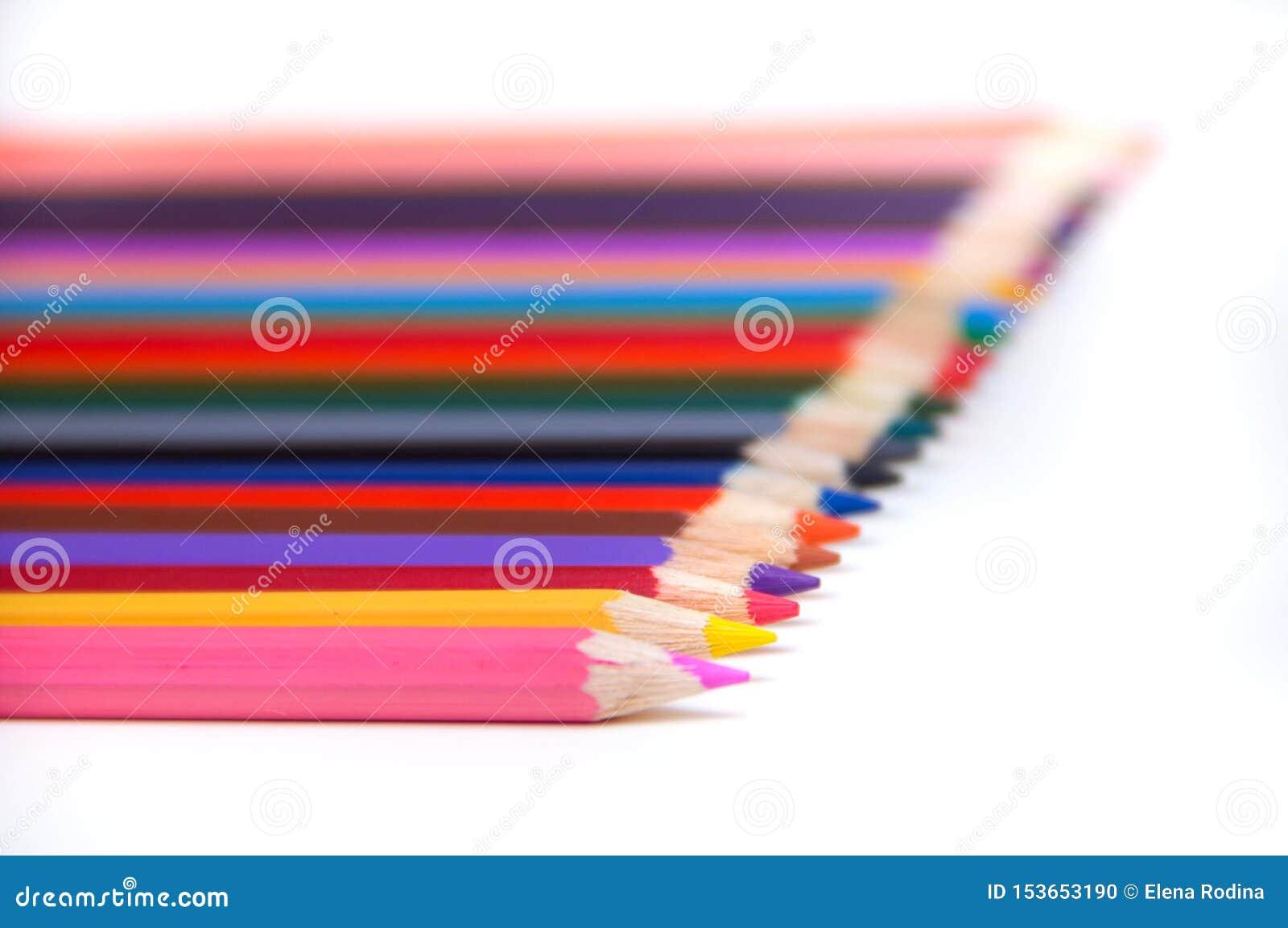 L?pices coloreados en el fondo blanco Sistema de los lápices del color, lápices de madera del color de la fila aislados en el fon