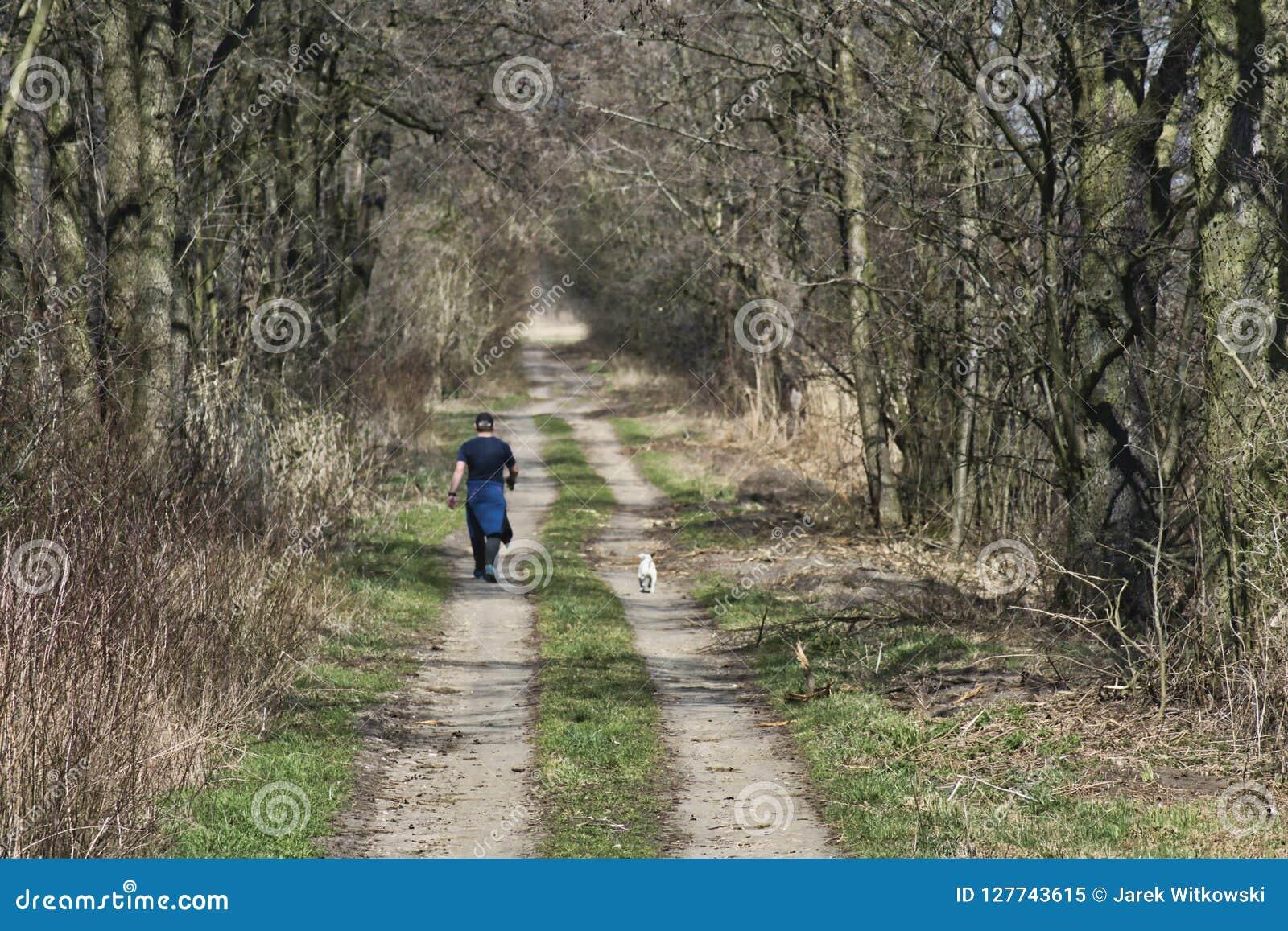 L uomo cammina con il cane