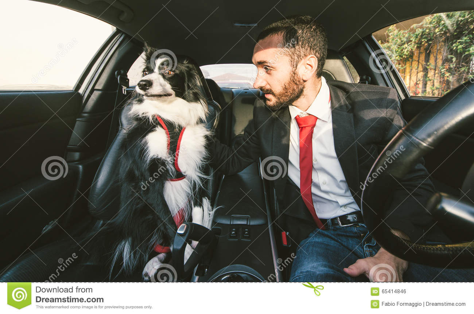 L uomo motiva il suo cane prima di concorrenza canina