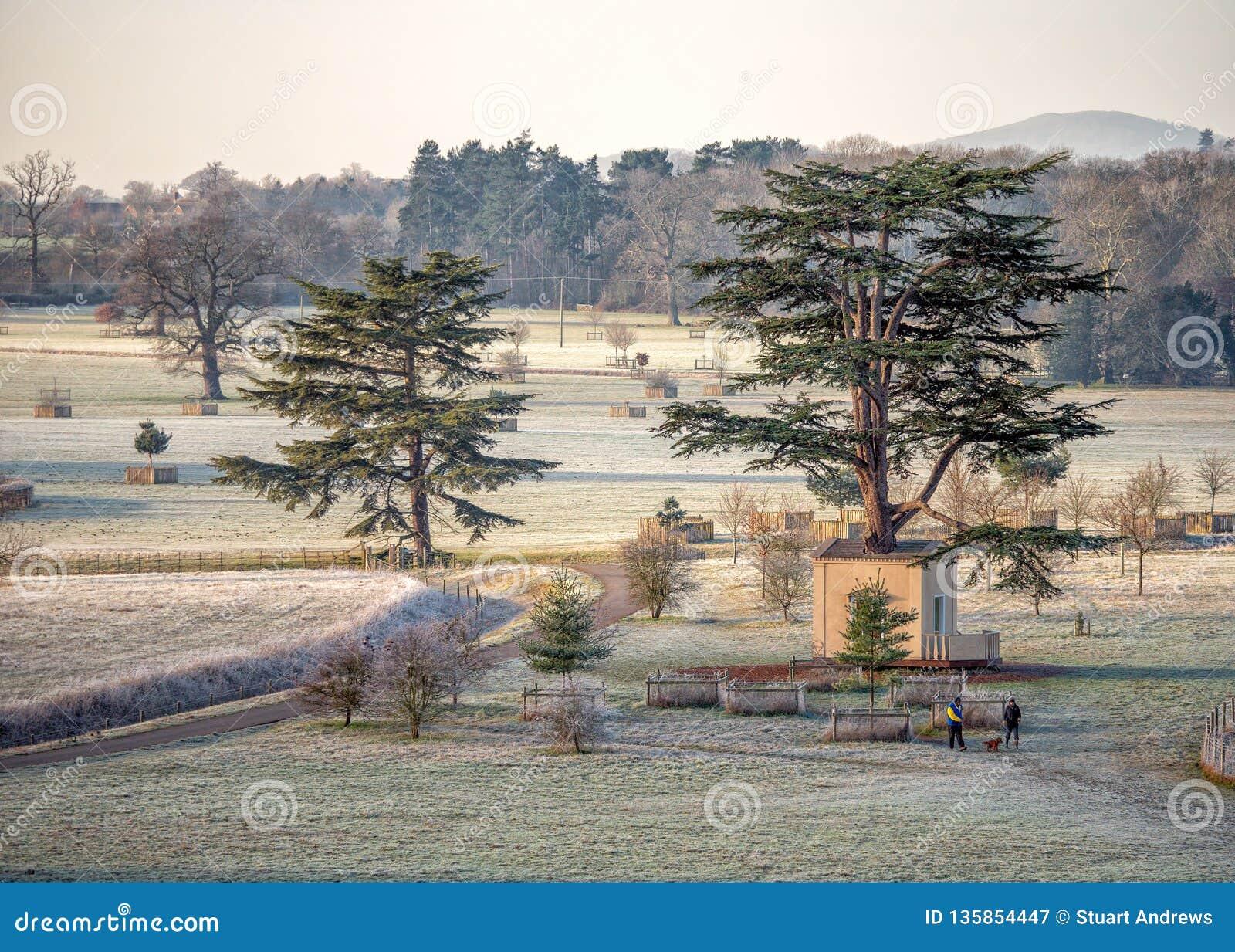 """La """"cabane dans un arbre en parc de Croome, Worcestershire, Angleterre"""