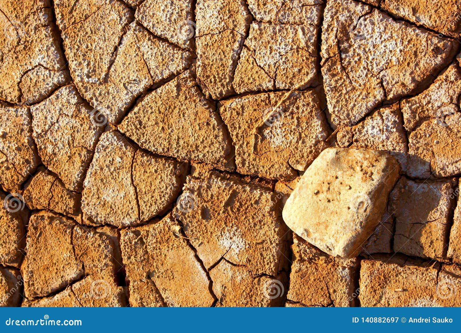 La arcilla agrietada molió en la estación de verano seca