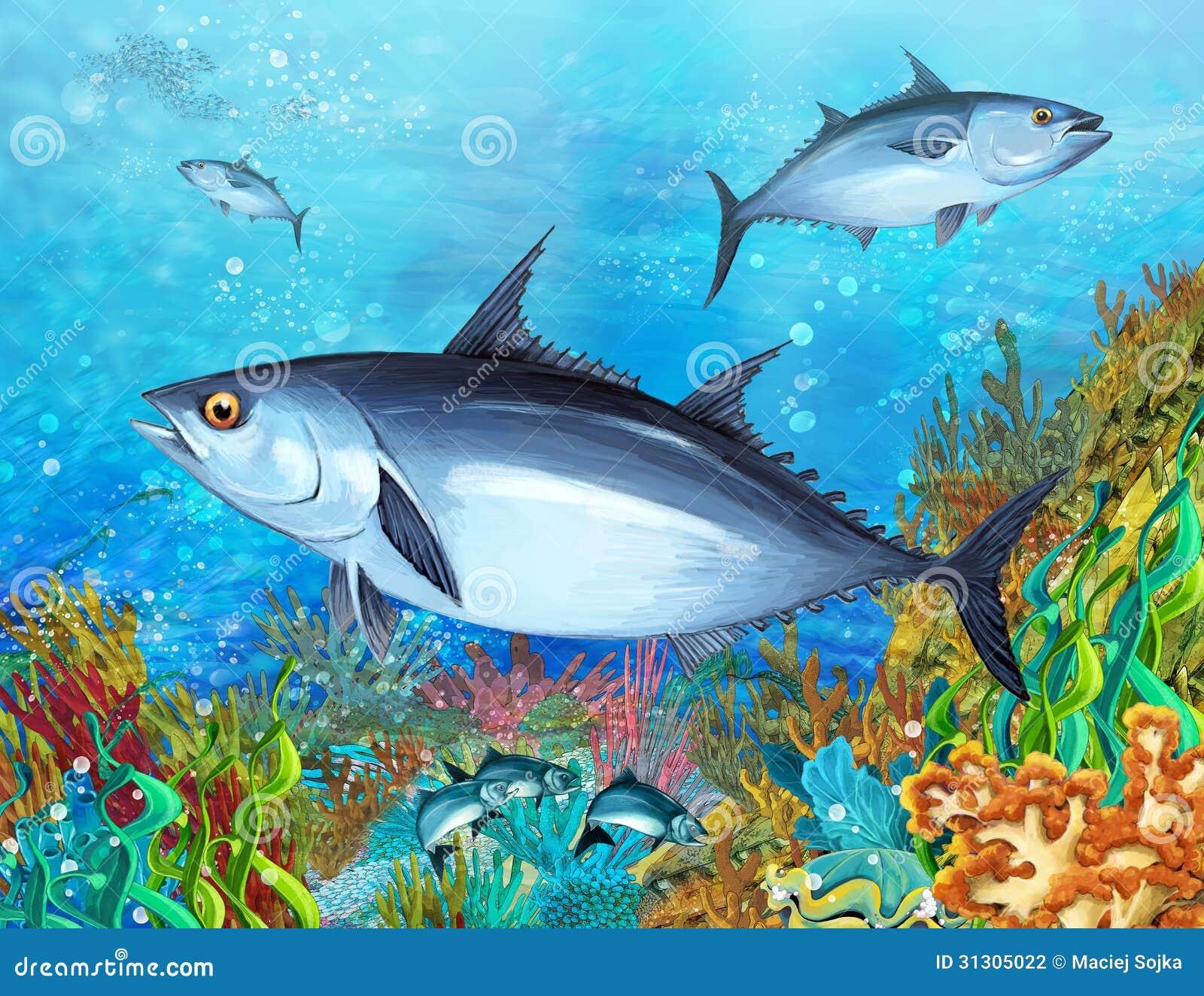 La barriera corallina - illustrazione per i bambini