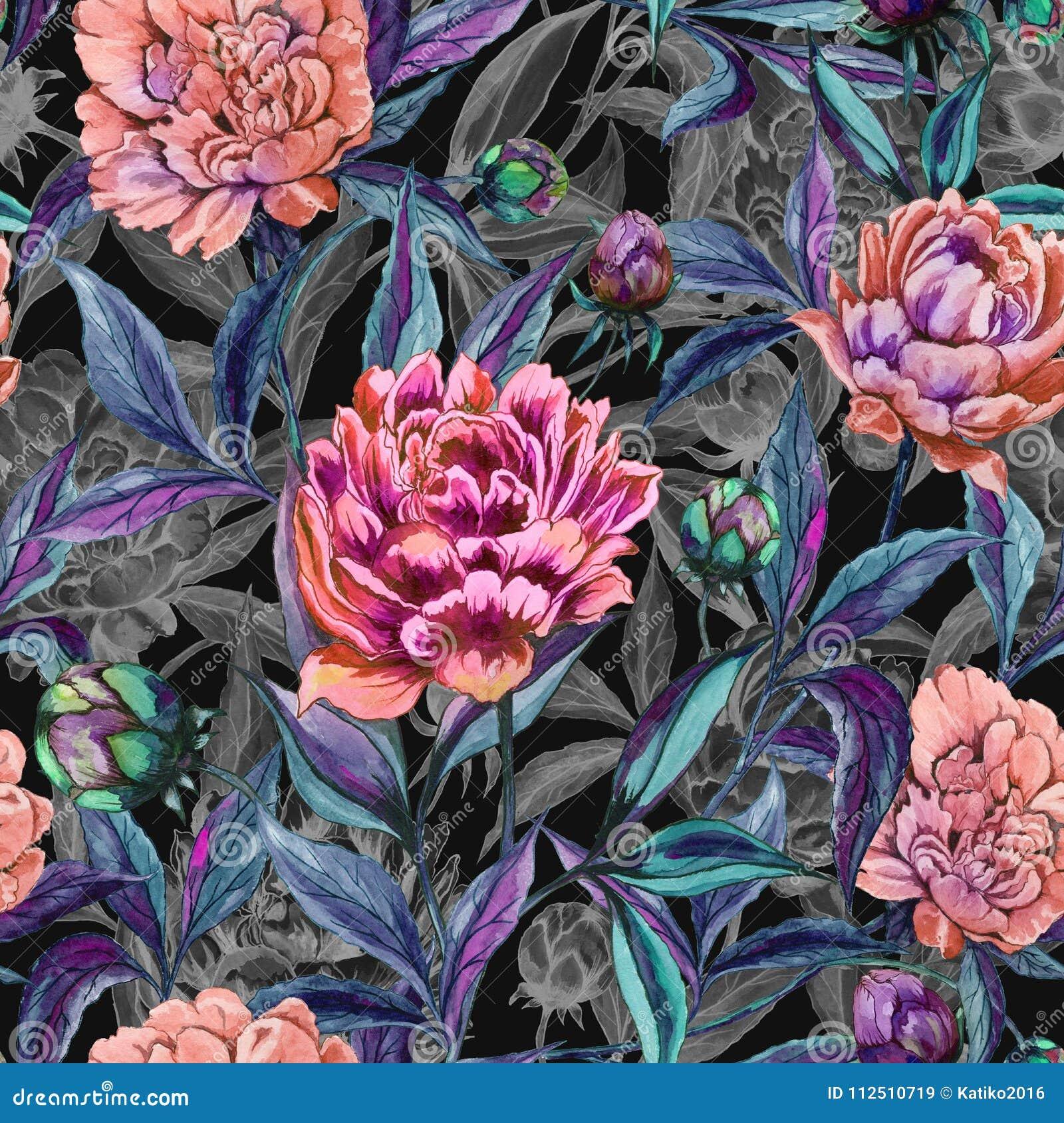 La bella peonia variopinta fiorisce con le foglie, i germogli ed i profili grigi su fondo nero Reticolo floreale senza giunte