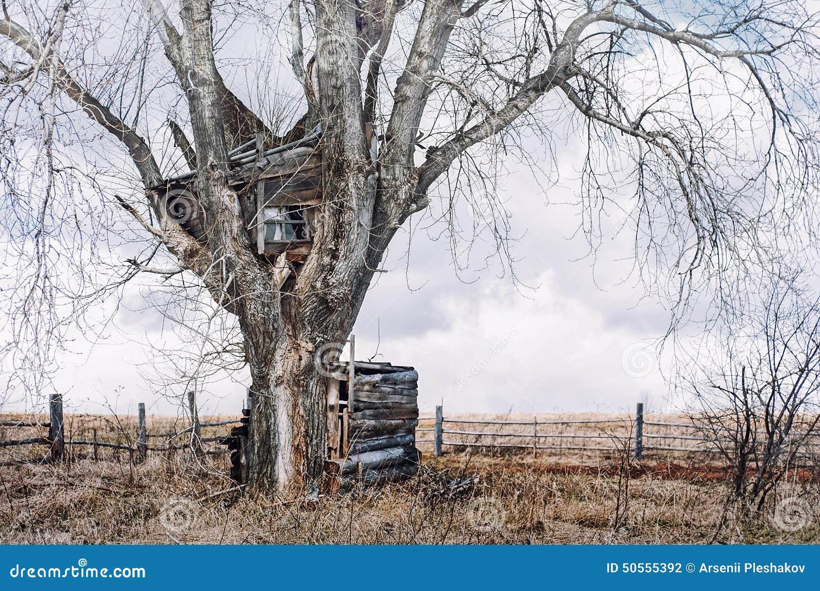 la cabane dans un arbre en vieille russie photo stock image 50555392. Black Bedroom Furniture Sets. Home Design Ideas