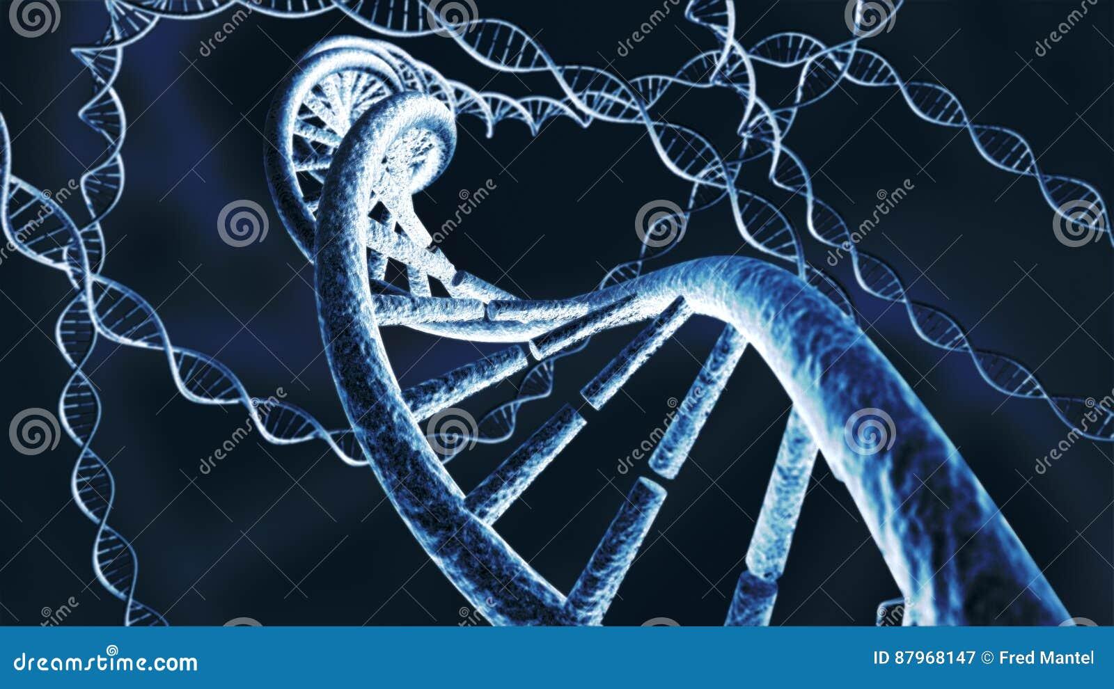 La cadena genética de la DNA trenza la representación 3D
