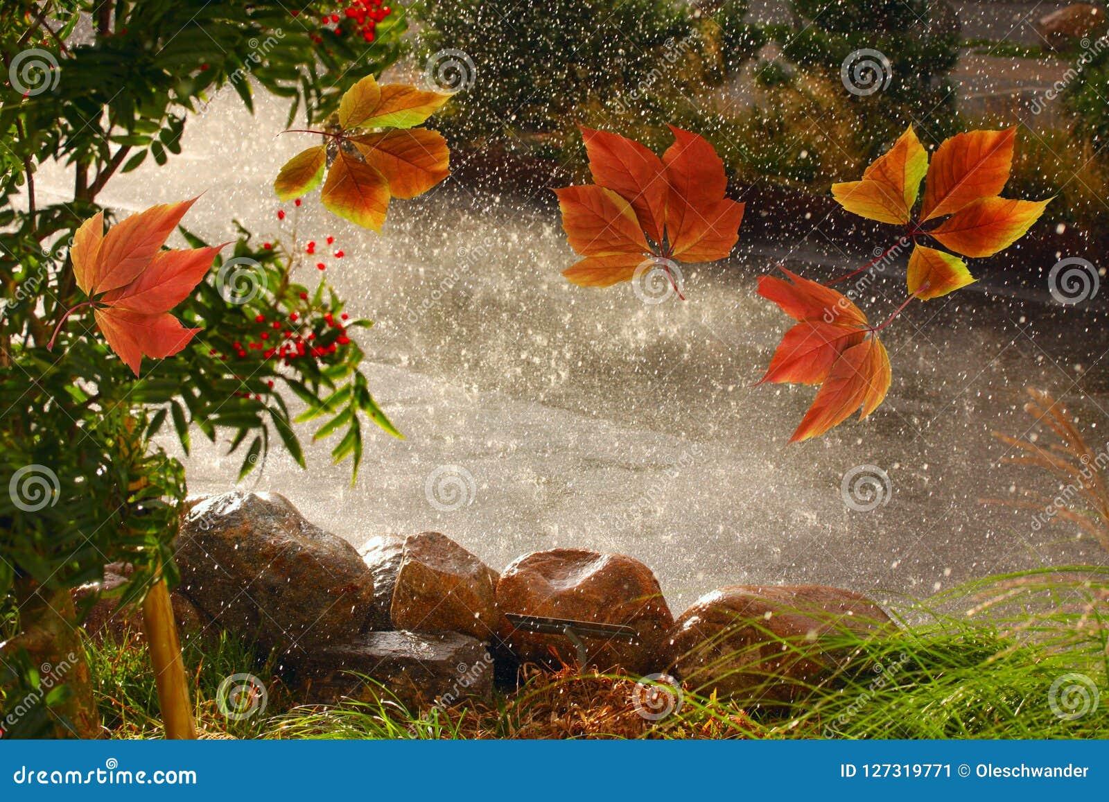 La caduta variopinta lascia il salto intorno del tempo della pioggia di autunno dei