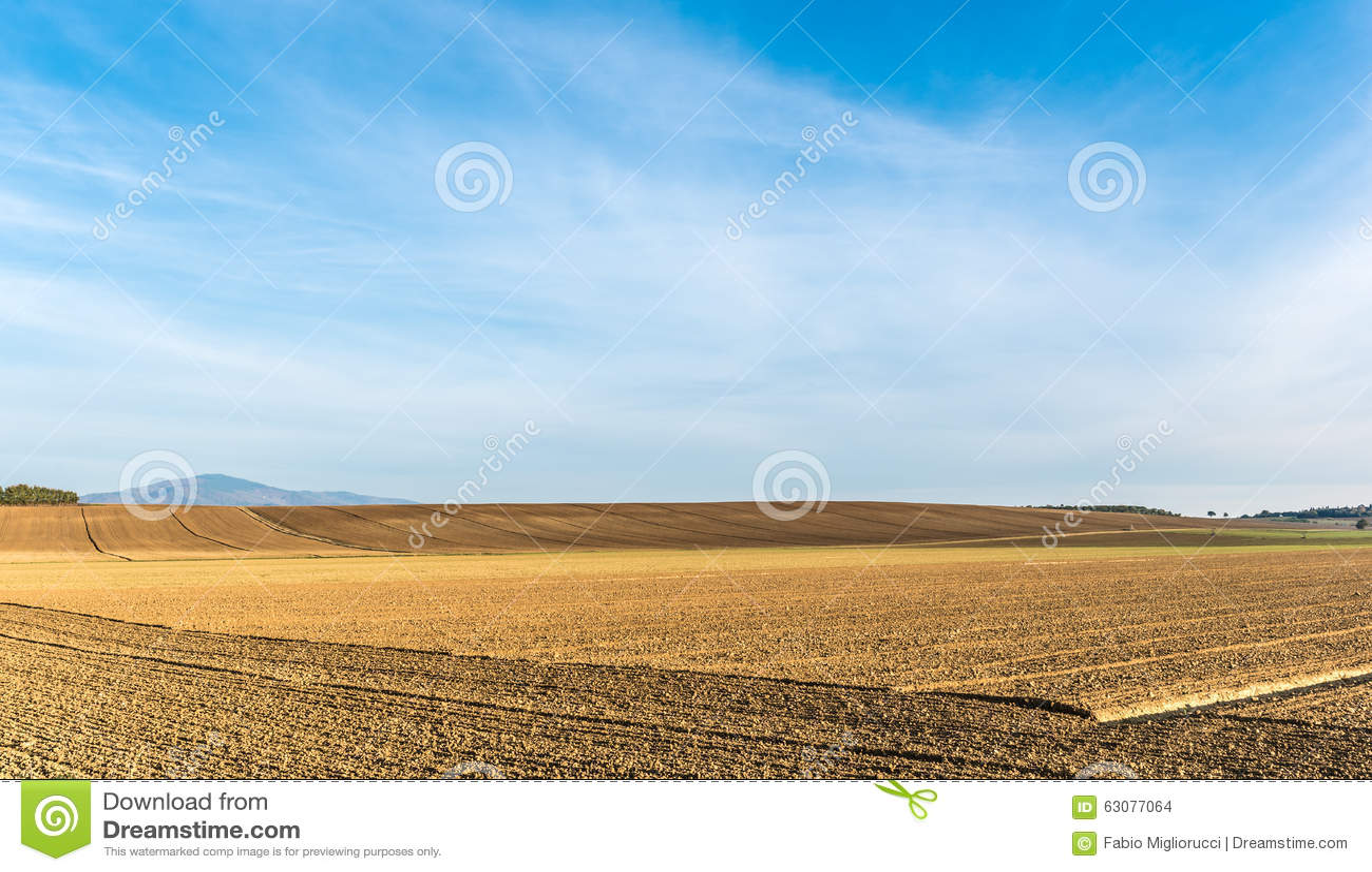Download La Campagne Verte Dans Cortona, Toscane Photo stock - Image du europe, tuscan: 63077064