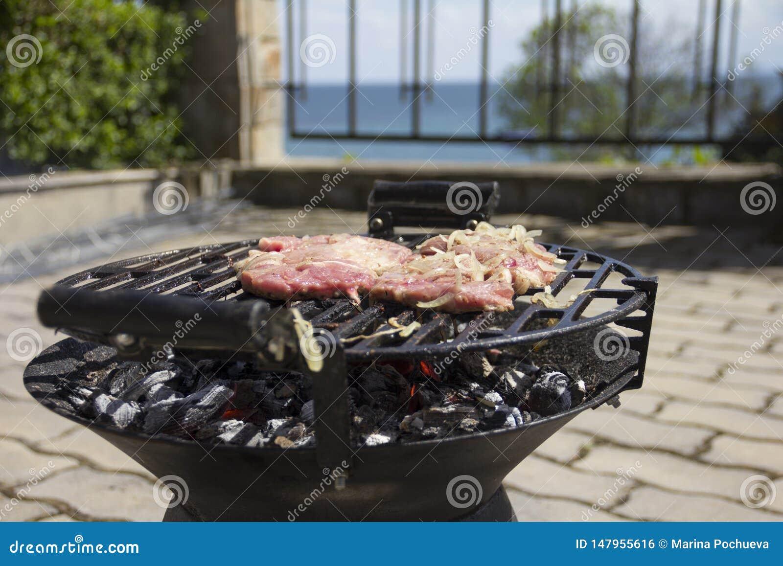 La carne fresca ? arrostita su un barbecue con le cipolle