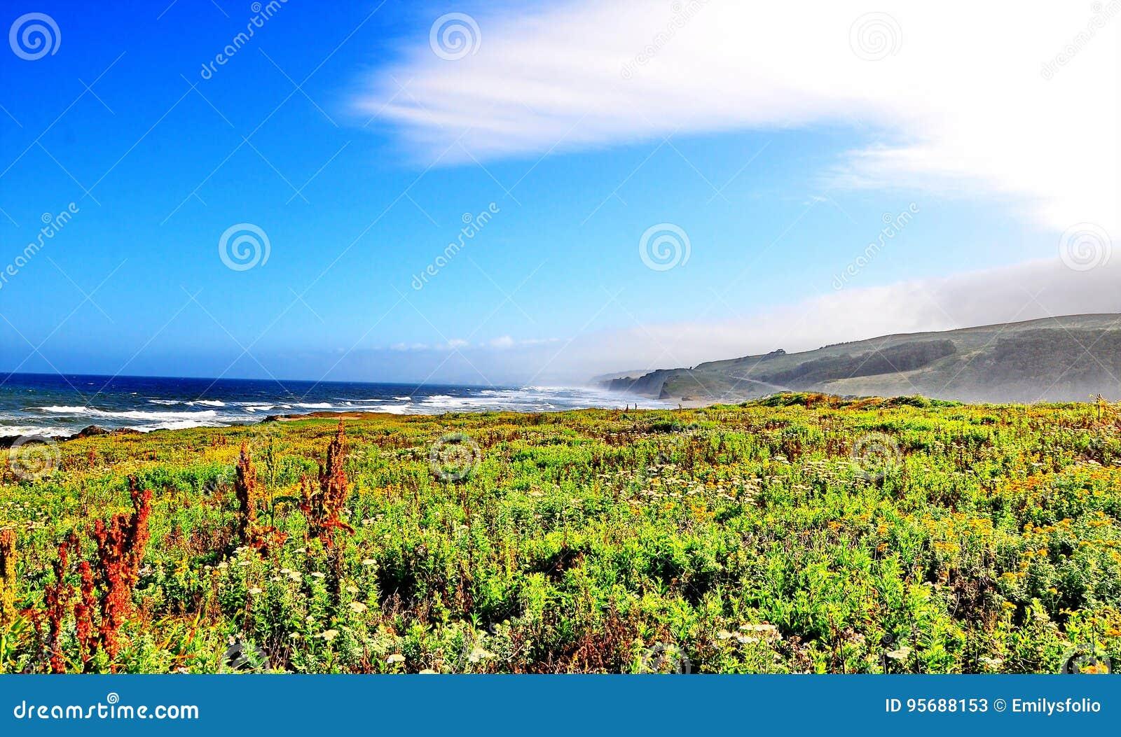 La carretera de la Costa del Pacífico en California