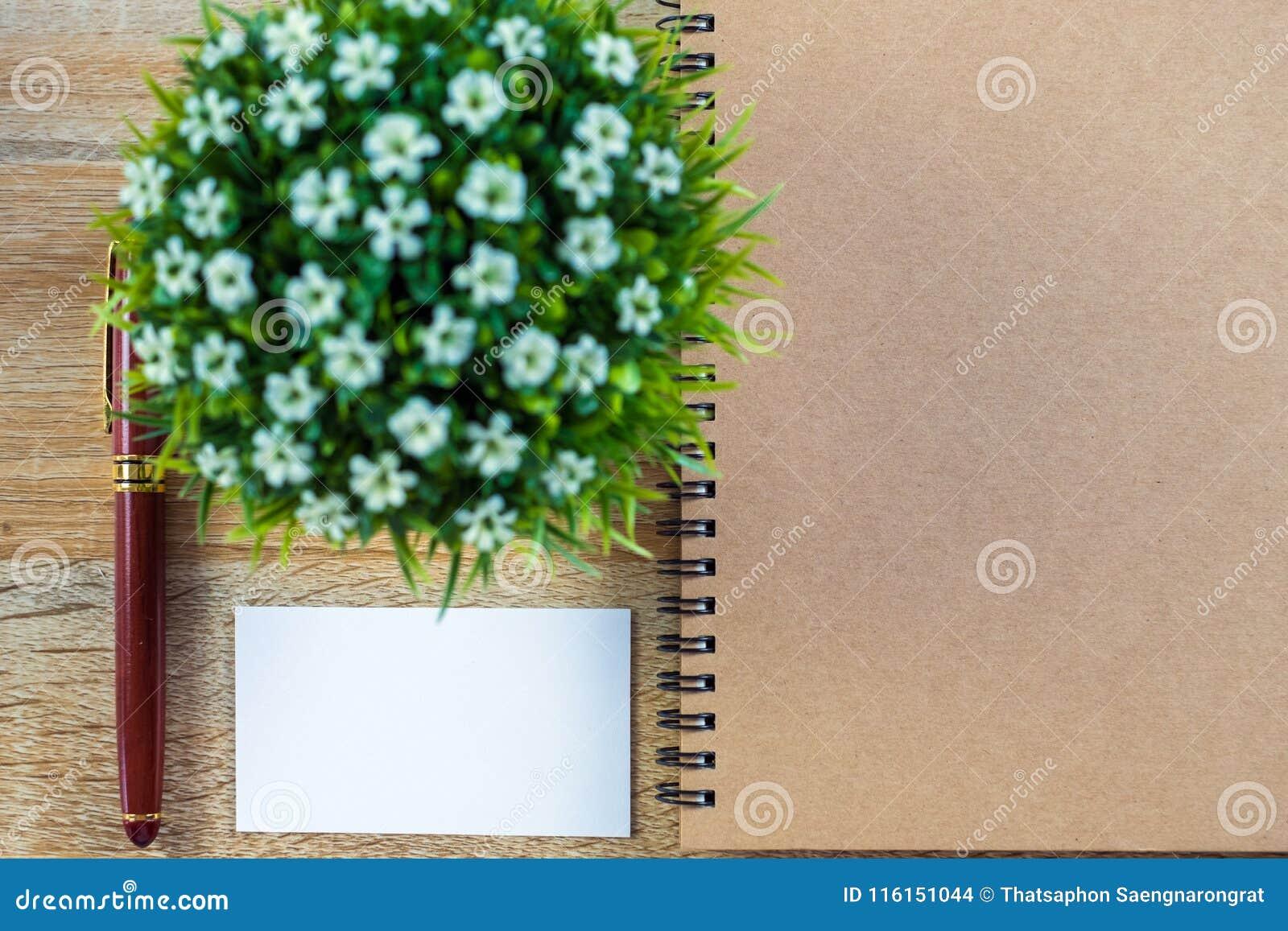 La Carte De Visite Professionnelle Ou Nominative Vierge Avec L Espace Pour