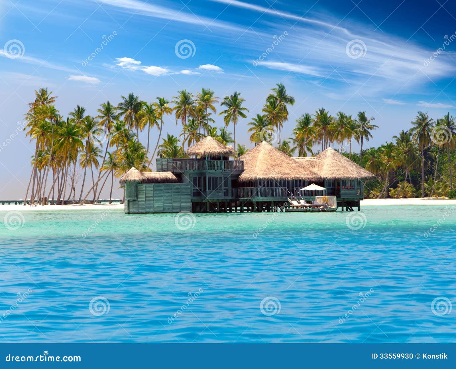 La Casa De Madera Contra Las Palmeras En La Isla Tropical Foto de ...