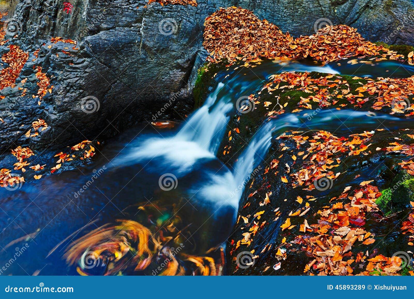 La cascade et les feuilles tombées de couleurs
