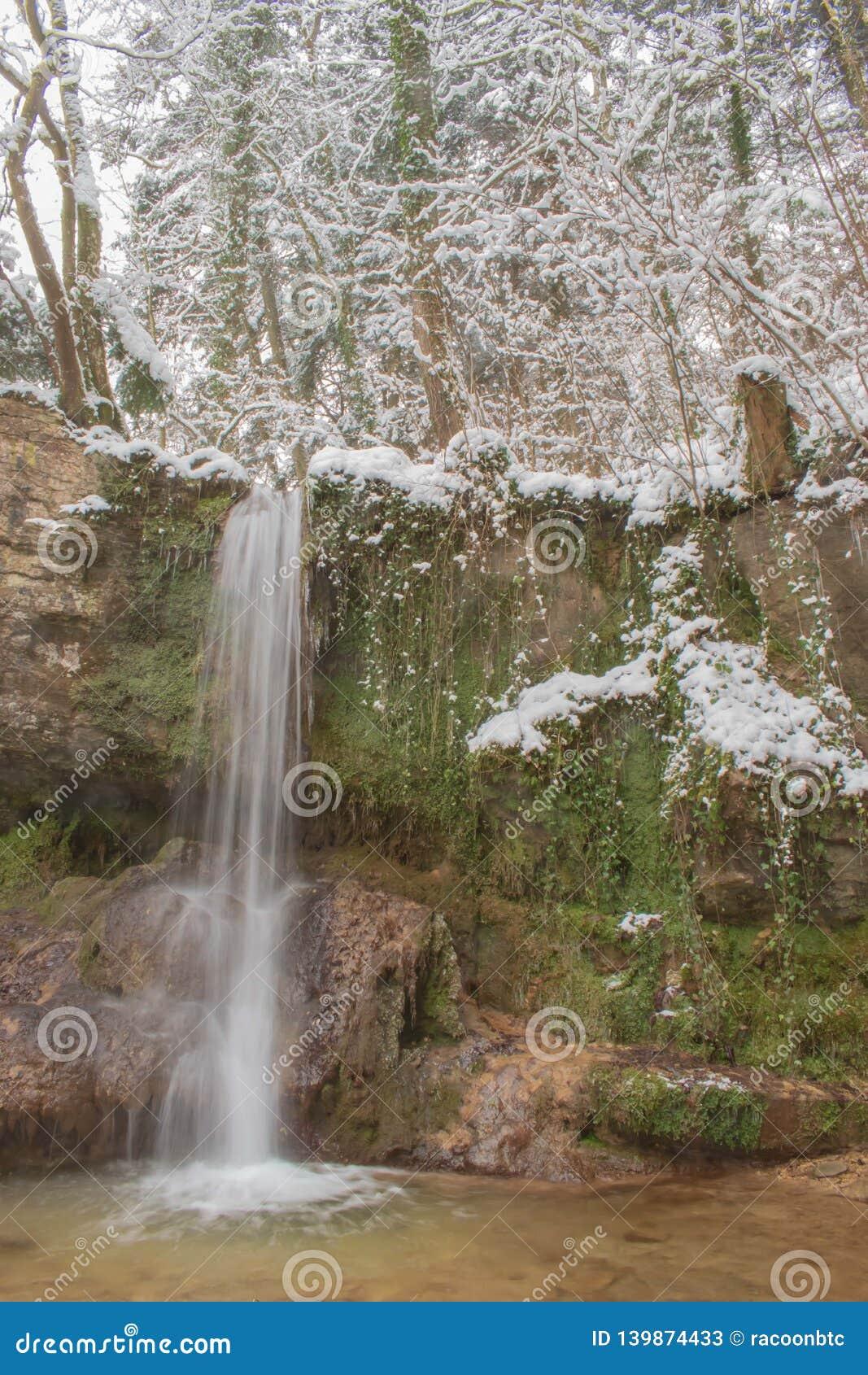 La cascata di Linn nella foresta innevata nell inverno Preso vicino a Linn, la Svizzera, nel cantone di Argovia