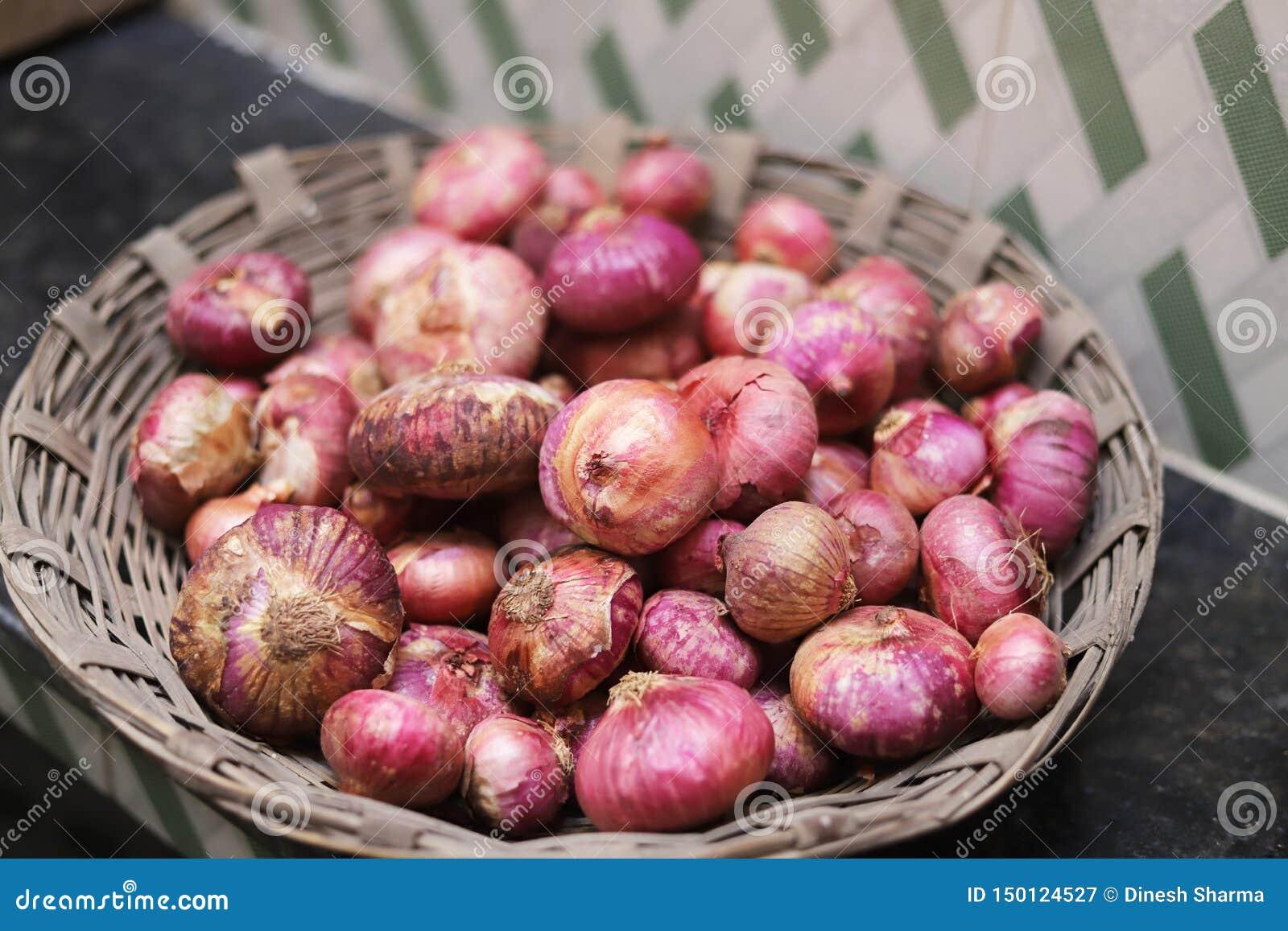 La cebolla es el nombre del fabricante sabroso de la comida