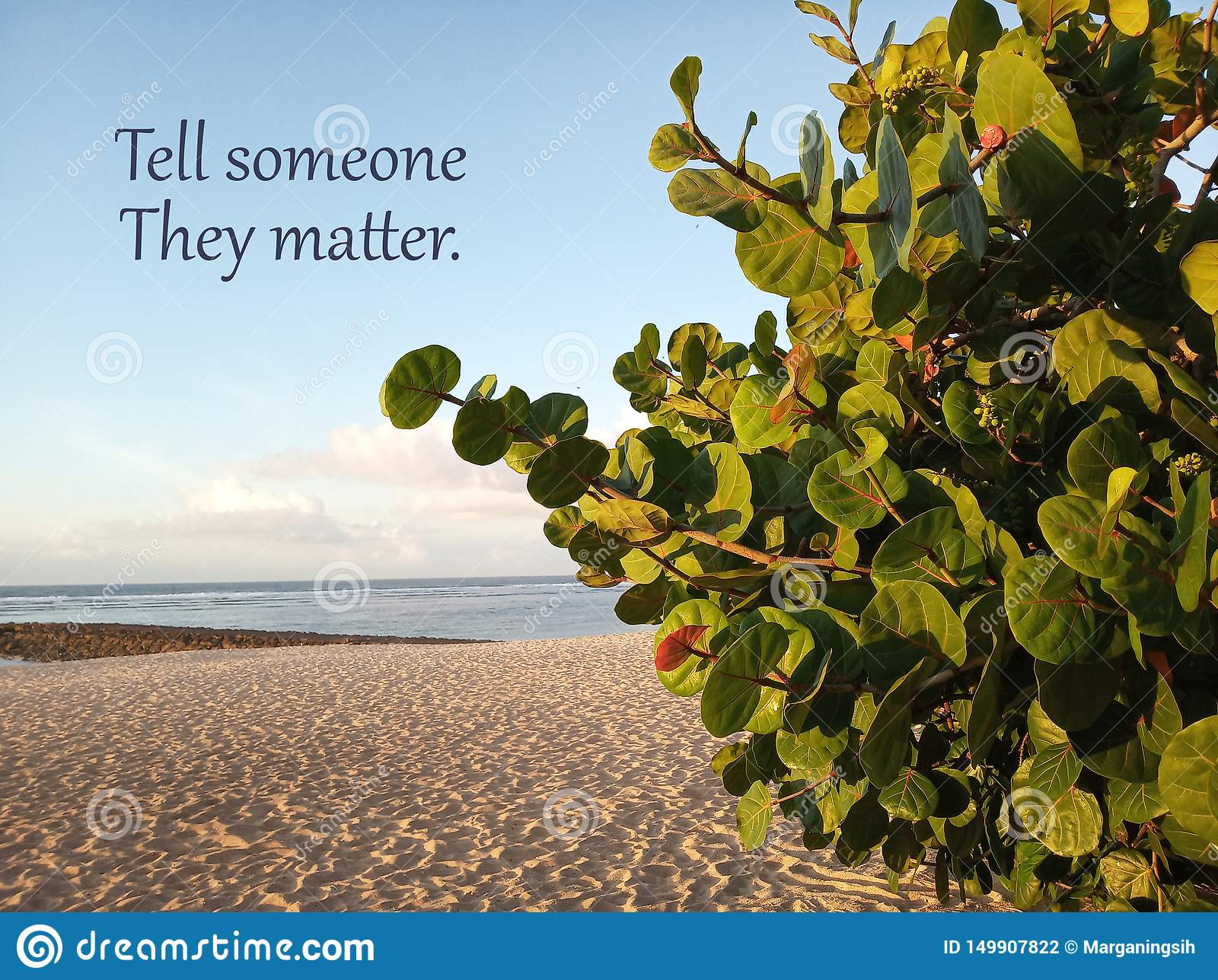 La citation de motivation inspirée indiquent quelqu un qu ils importent Avec la plage sablonneuse blanche sous le paysage propre