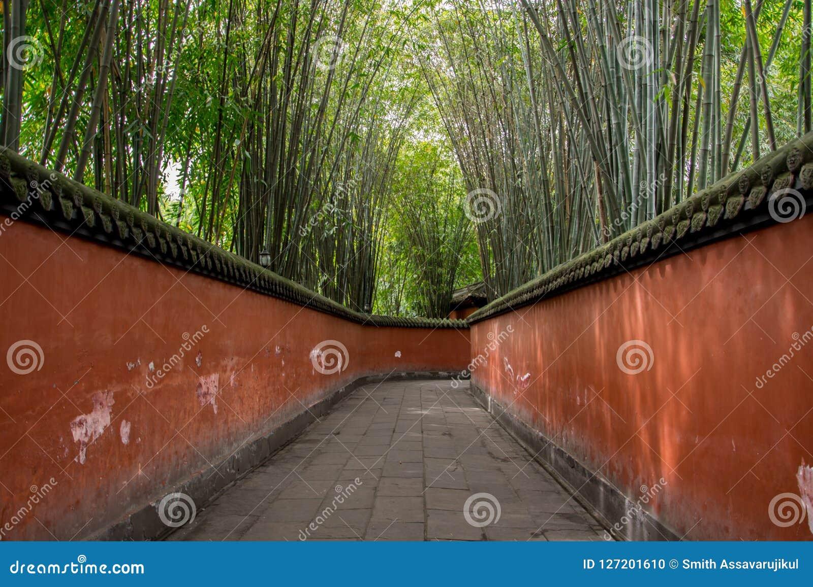 La couverture de chemin par des bambous