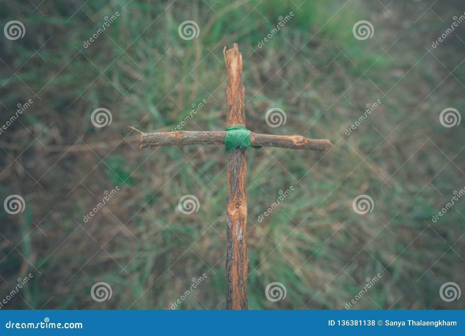 La cruz con la naturaleza en el bosque en la colina es el Blackground
